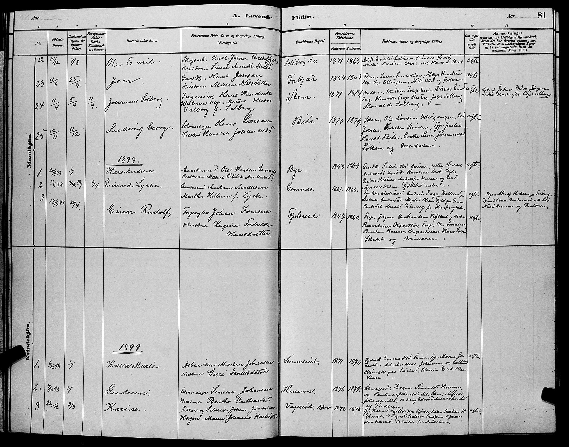 SAKO, Hole kirkebøker, G/Ga/L0003: Klokkerbok nr. I 3, 1879-1904, s. 81