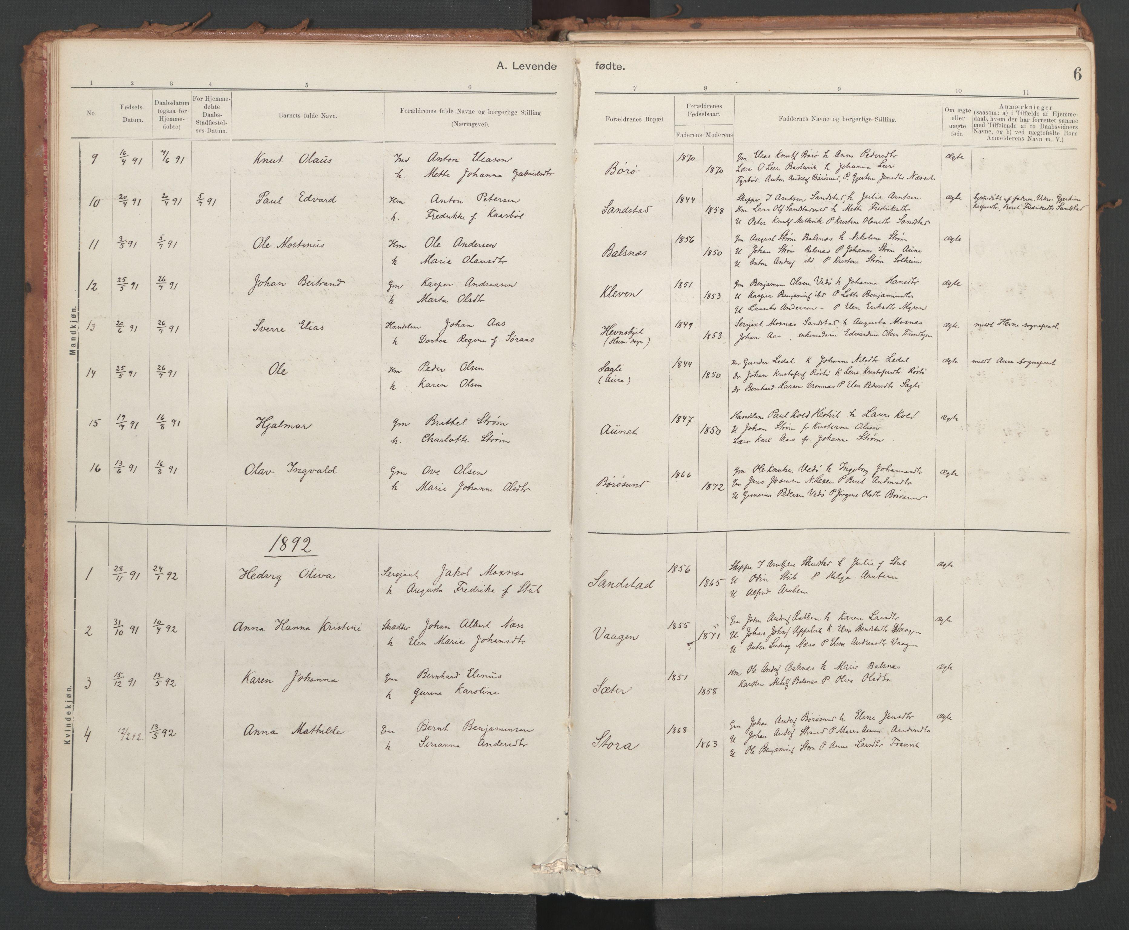 SAT, Ministerialprotokoller, klokkerbøker og fødselsregistre - Sør-Trøndelag, 639/L0572: Ministerialbok nr. 639A01, 1890-1920, s. 6