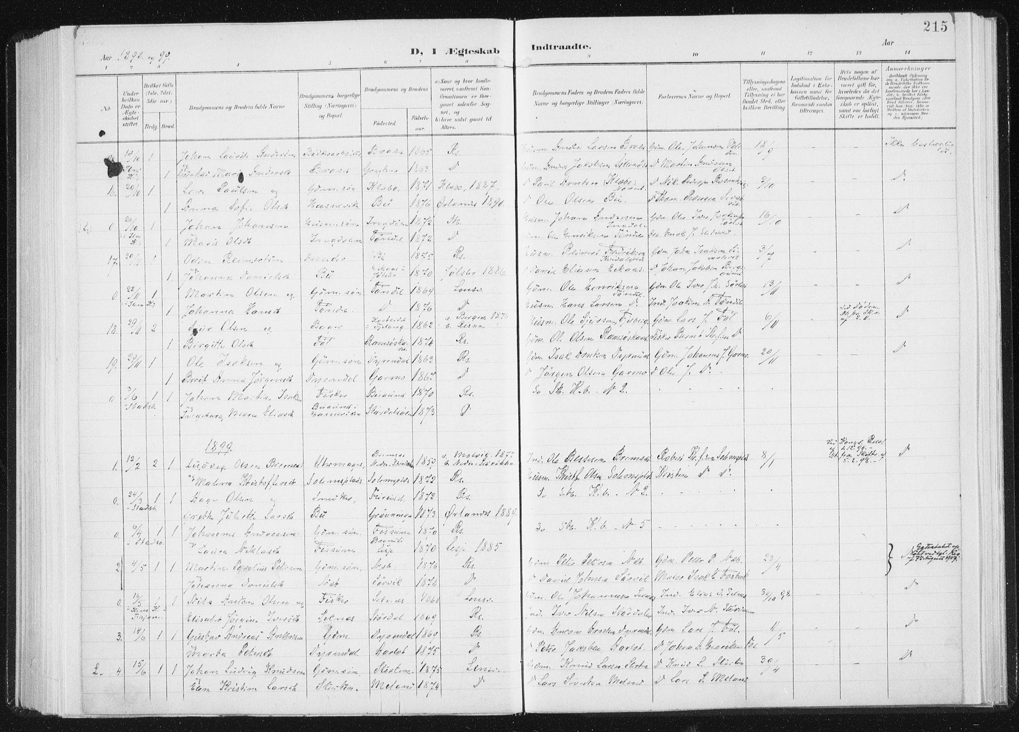SAT, Ministerialprotokoller, klokkerbøker og fødselsregistre - Sør-Trøndelag, 647/L0635: Ministerialbok nr. 647A02, 1896-1911, s. 215