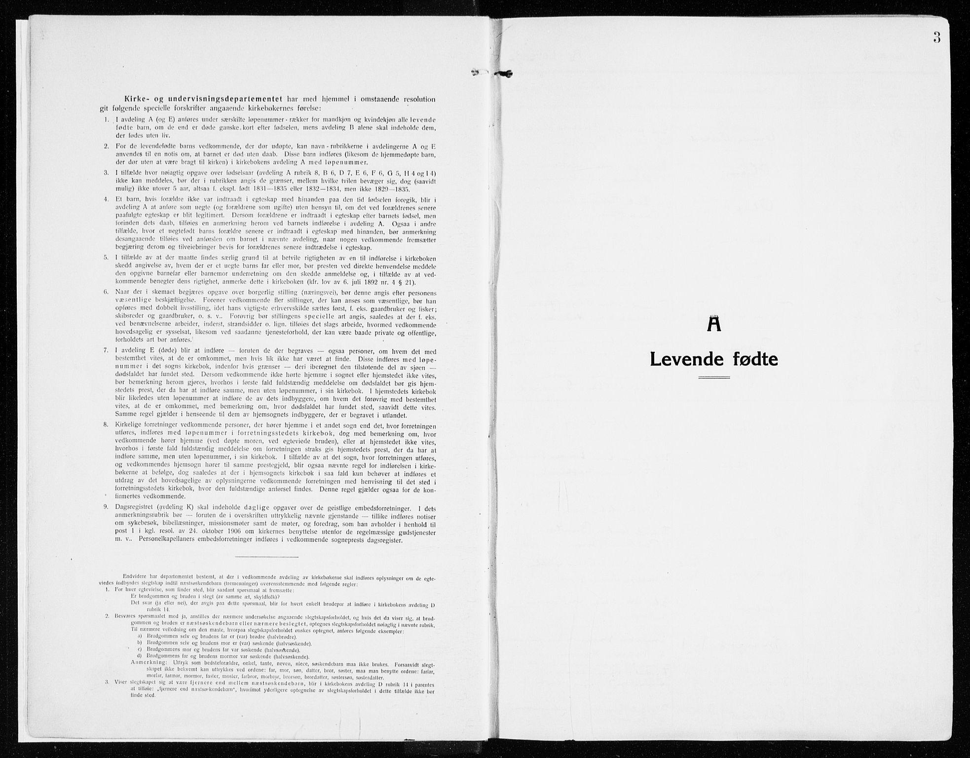 SAH, Vardal prestekontor, H/Ha/Haa/L0017: Ministerialbok nr. 17, 1915-1929, s. 3