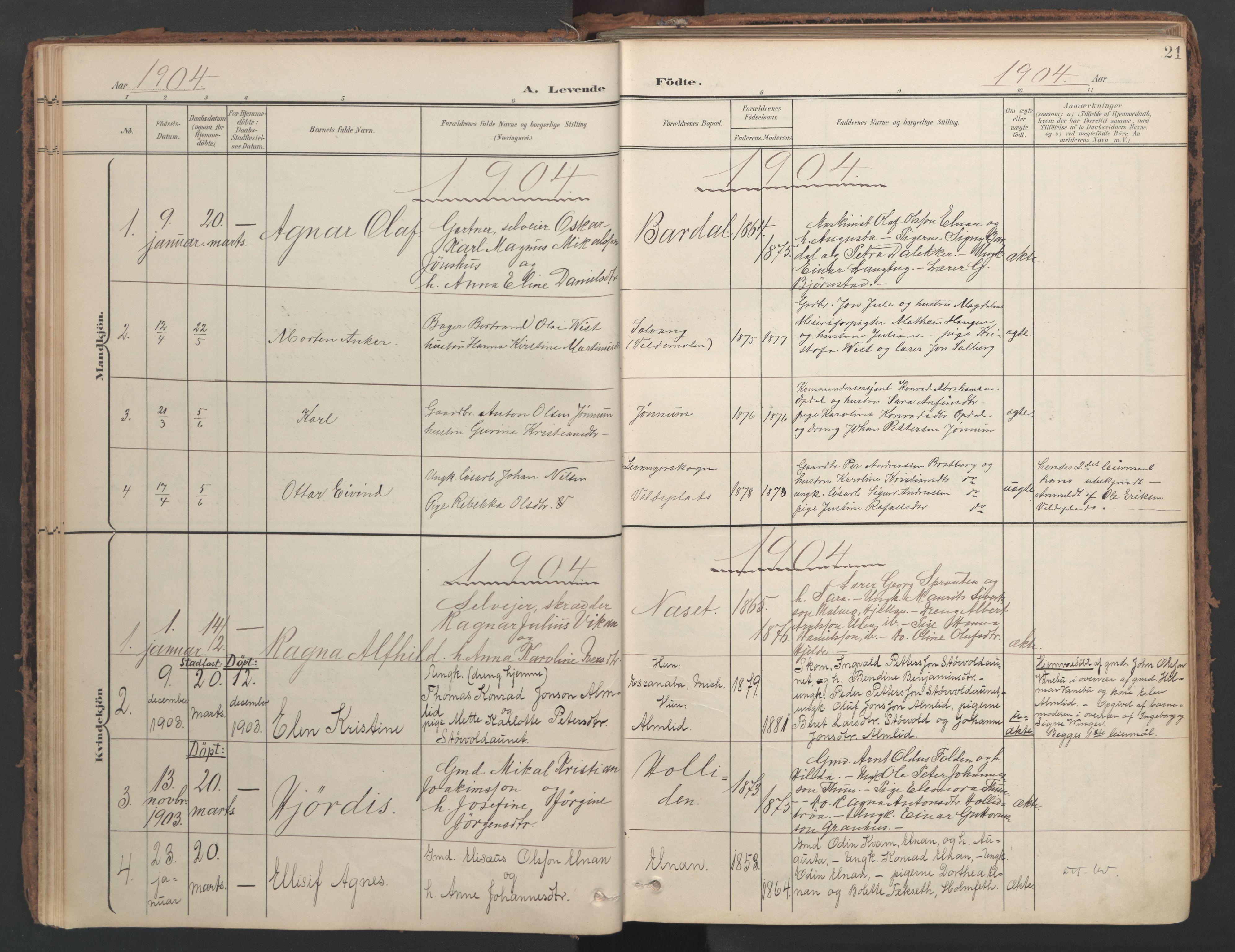 SAT, Ministerialprotokoller, klokkerbøker og fødselsregistre - Nord-Trøndelag, 741/L0397: Ministerialbok nr. 741A11, 1901-1911, s. 21