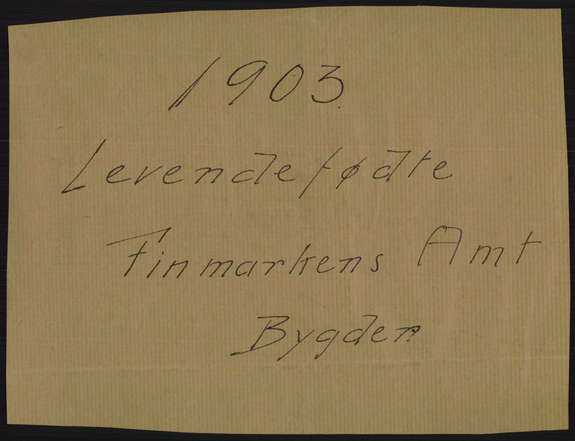 RA, Statistisk sentralbyrå, Sosiodemografiske emner, Befolkning, D/Df/Dfa/Dfaa/L0022: Finnmarkens amt: Fødte, gifte, døde., 1903