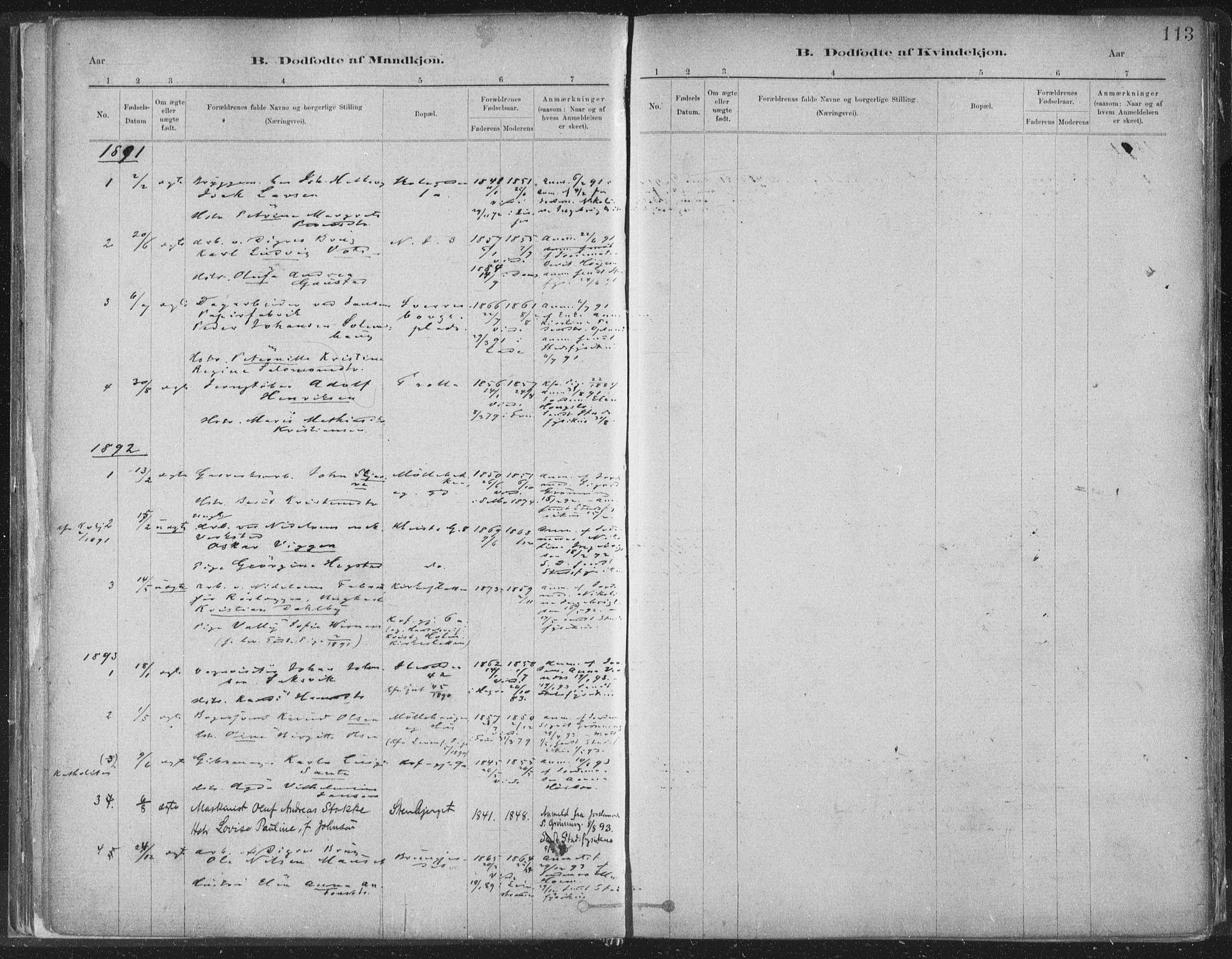 SAT, Ministerialprotokoller, klokkerbøker og fødselsregistre - Sør-Trøndelag, 603/L0162: Ministerialbok nr. 603A01, 1879-1895, s. 113