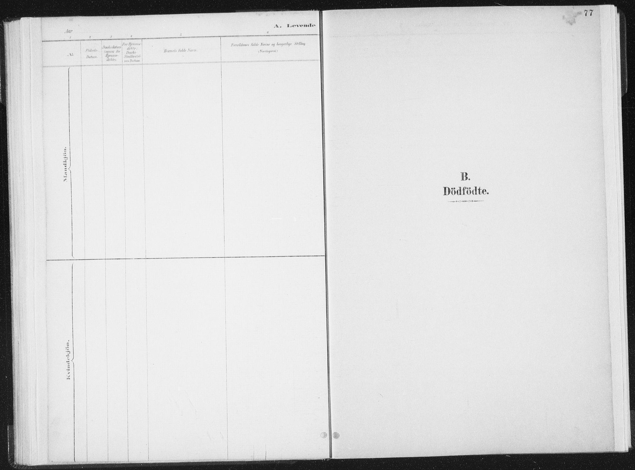SAT, Ministerialprotokoller, klokkerbøker og fødselsregistre - Nord-Trøndelag, 771/L0597: Ministerialbok nr. 771A04, 1885-1910, s. 77