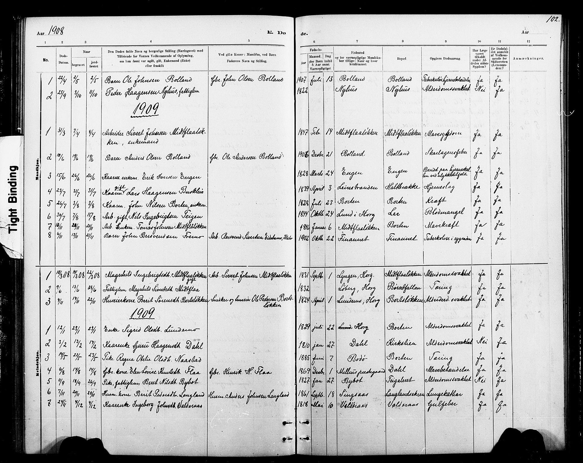 SAT, Ministerialprotokoller, klokkerbøker og fødselsregistre - Sør-Trøndelag, 693/L1123: Klokkerbok nr. 693C04, 1887-1910, s. 102