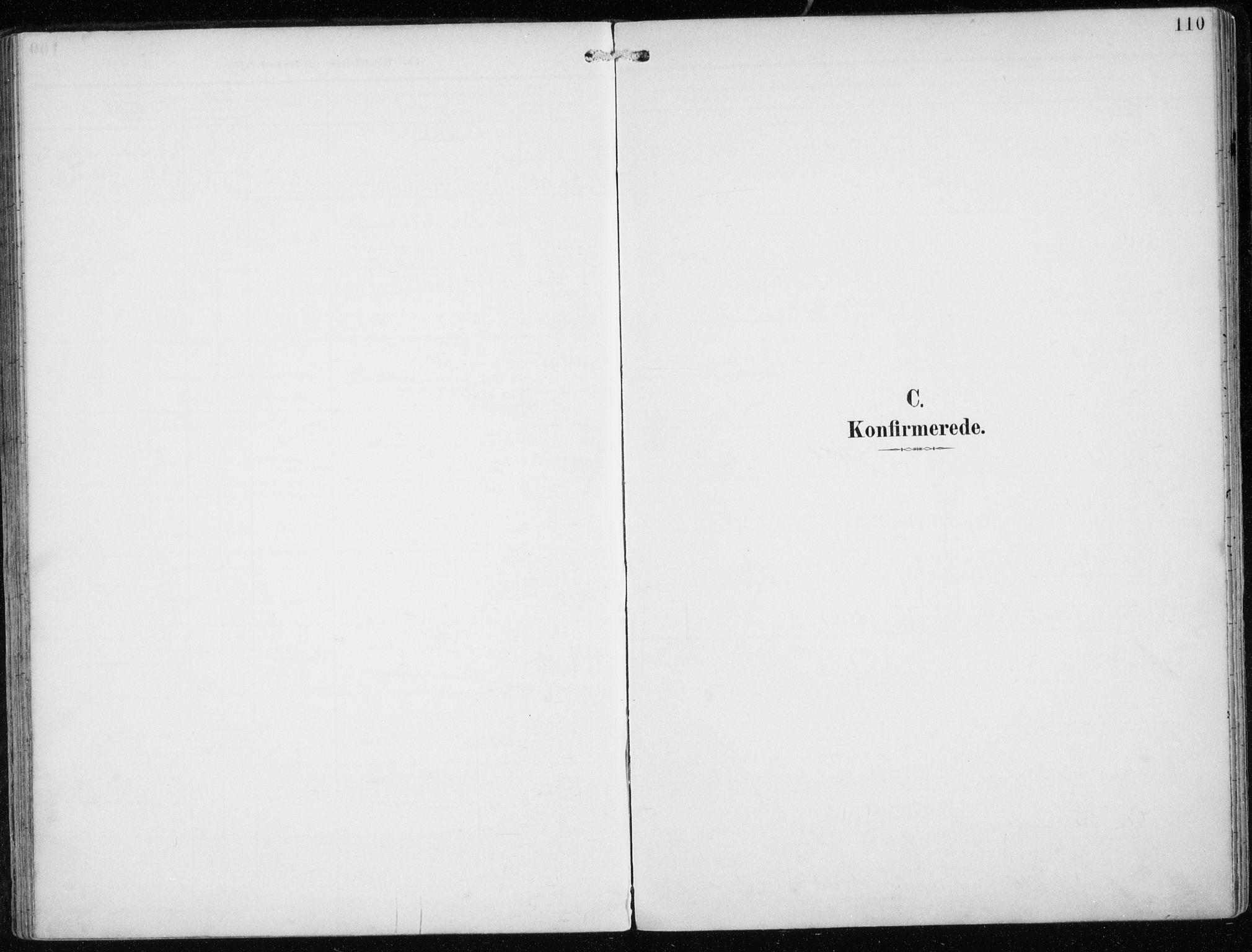 SATØ, Skjervøy sokneprestkontor, H/Ha/Haa/L0016kirke: Ministerialbok nr. 16, 1892-1908, s. 110
