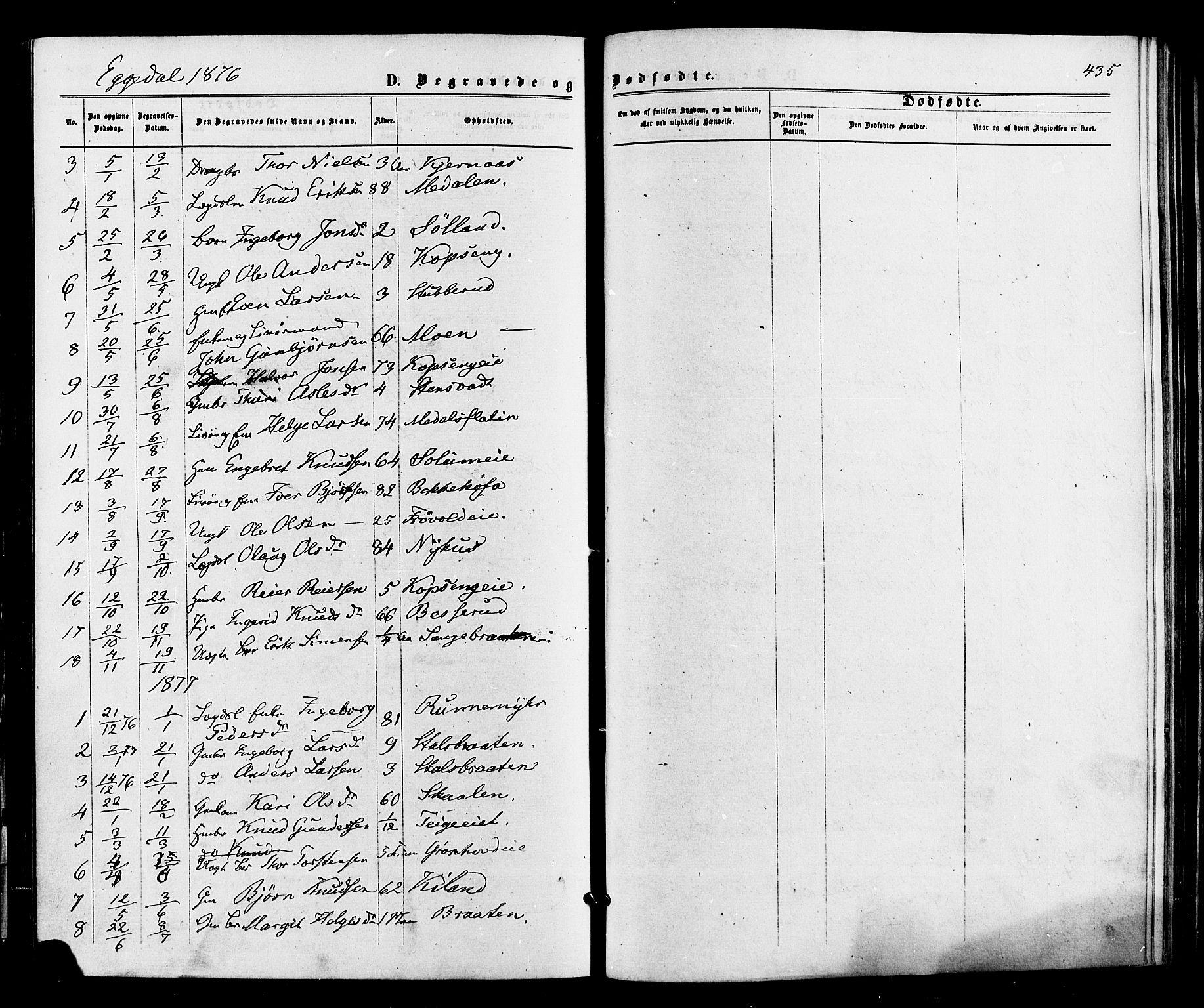 SAKO, Sigdal kirkebøker, F/Fa/L0010: Ministerialbok nr. I 10 /3, 1872-1878, s. 435