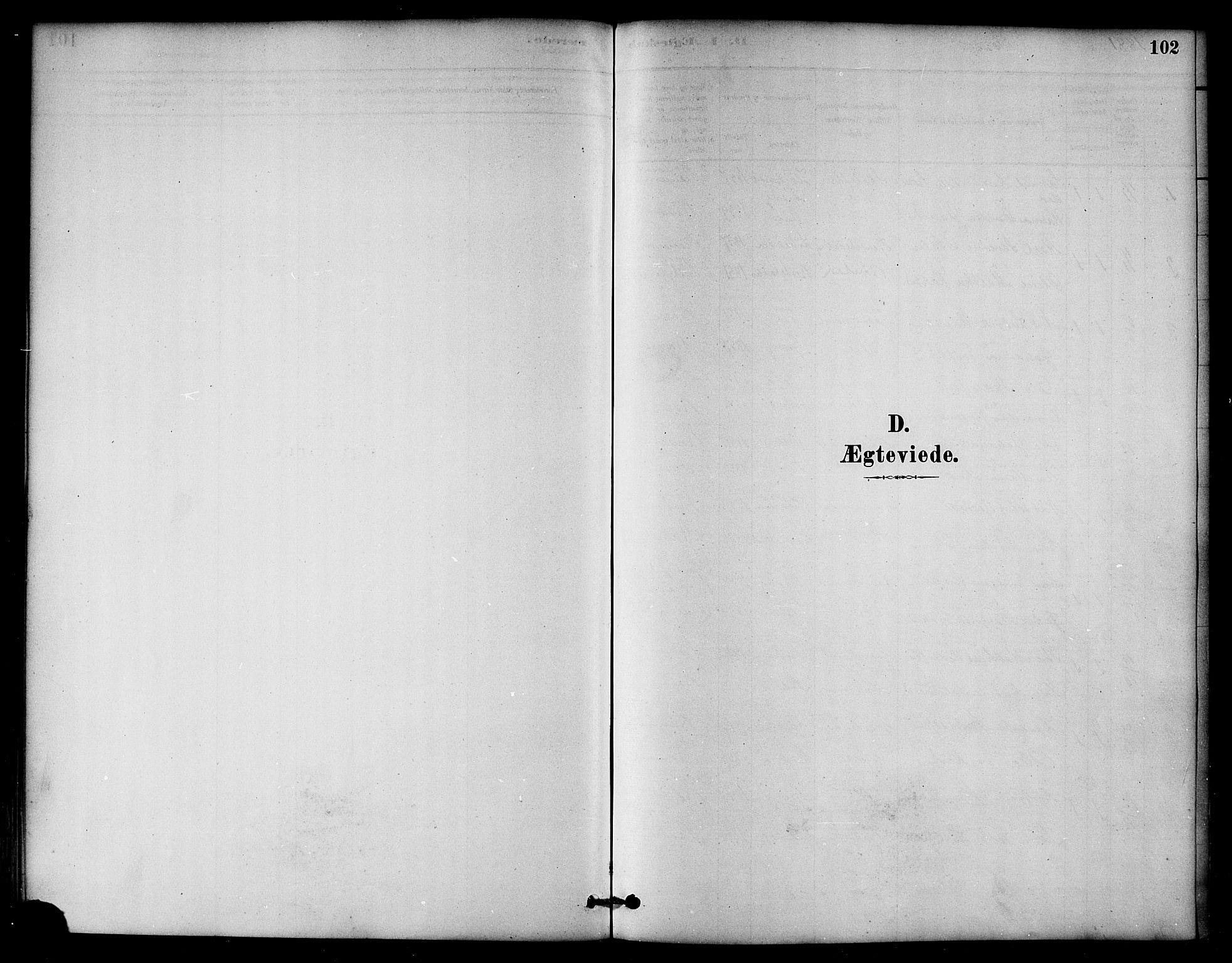 SAT, Ministerialprotokoller, klokkerbøker og fødselsregistre - Nord-Trøndelag, 764/L0555: Ministerialbok nr. 764A10, 1881-1896, s. 102