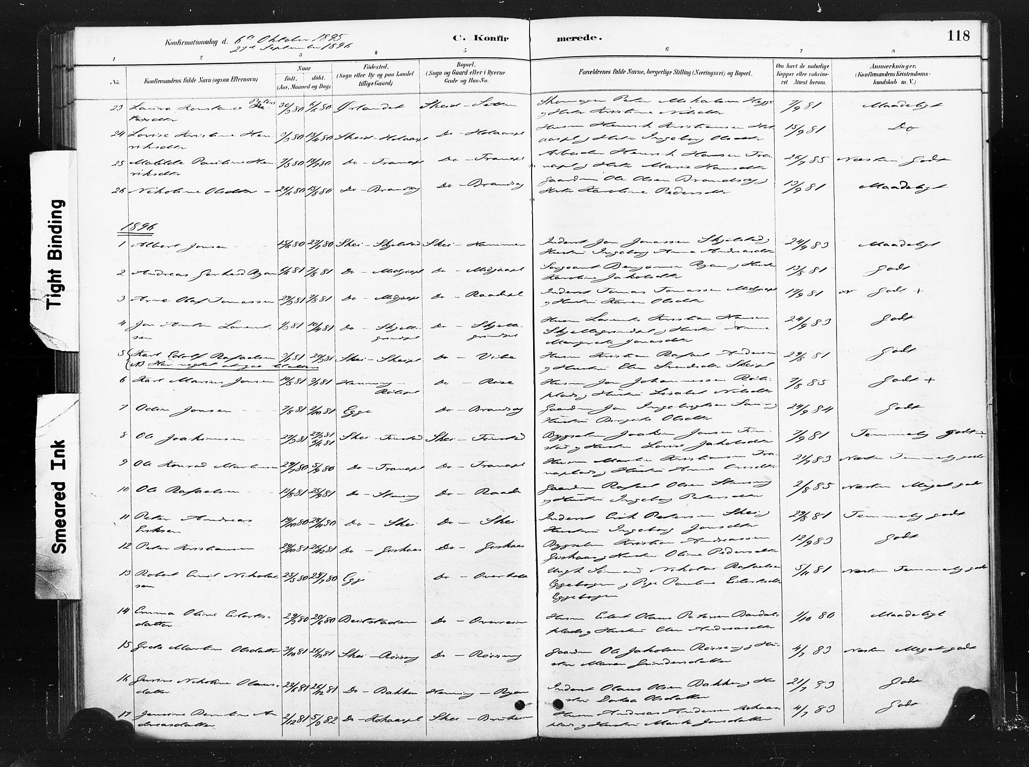 SAT, Ministerialprotokoller, klokkerbøker og fødselsregistre - Nord-Trøndelag, 736/L0361: Ministerialbok nr. 736A01, 1884-1906, s. 118