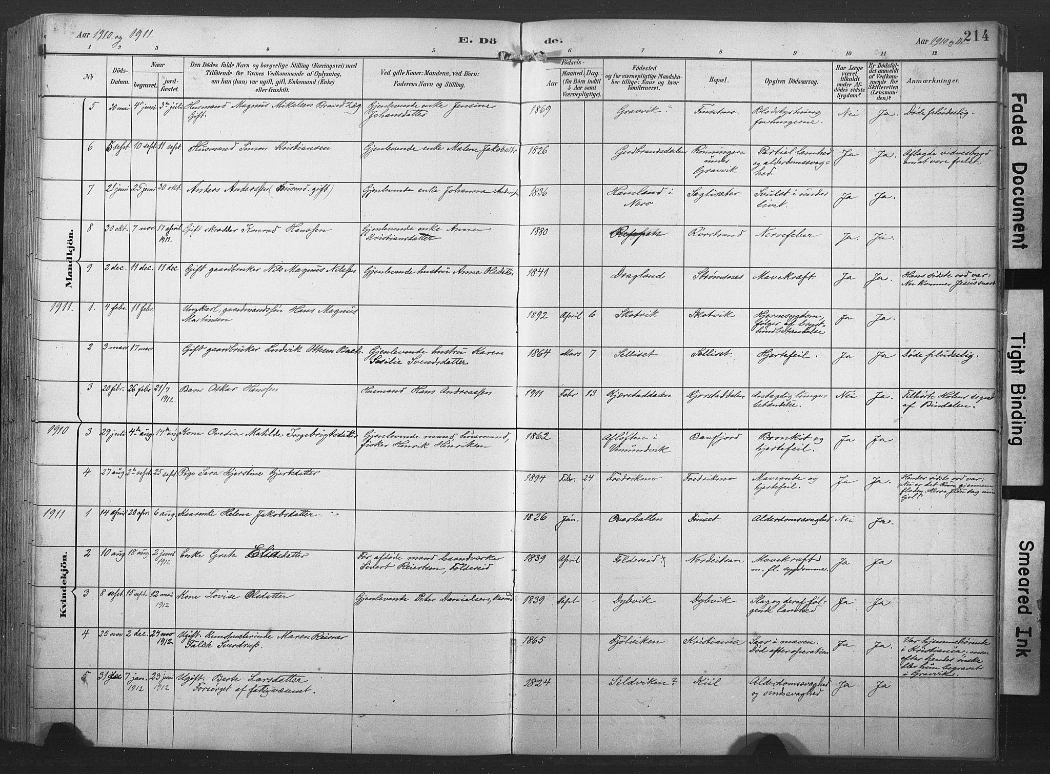 SAT, Ministerialprotokoller, klokkerbøker og fødselsregistre - Nord-Trøndelag, 789/L0706: Klokkerbok nr. 789C01, 1888-1931, s. 214