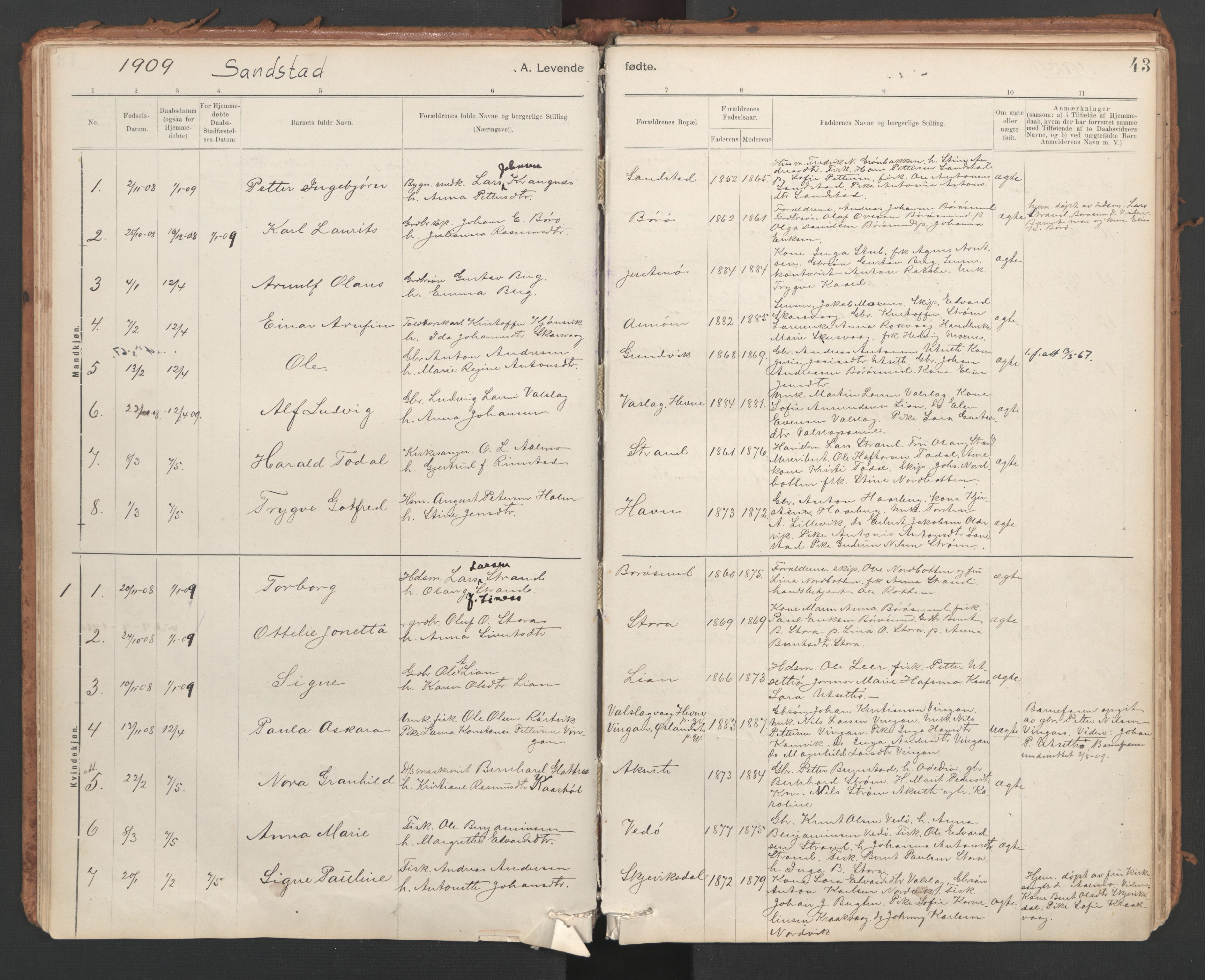 SAT, Ministerialprotokoller, klokkerbøker og fødselsregistre - Sør-Trøndelag, 639/L0572: Ministerialbok nr. 639A01, 1890-1920, s. 43