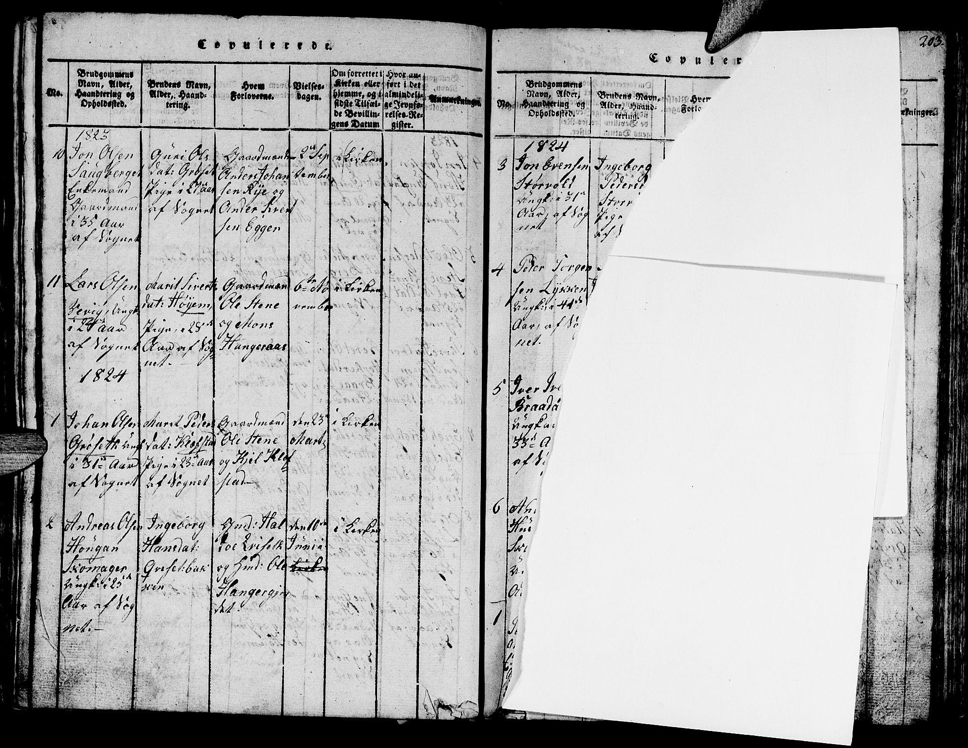 SAT, Ministerialprotokoller, klokkerbøker og fødselsregistre - Sør-Trøndelag, 612/L0385: Klokkerbok nr. 612C01, 1816-1845, s. 202