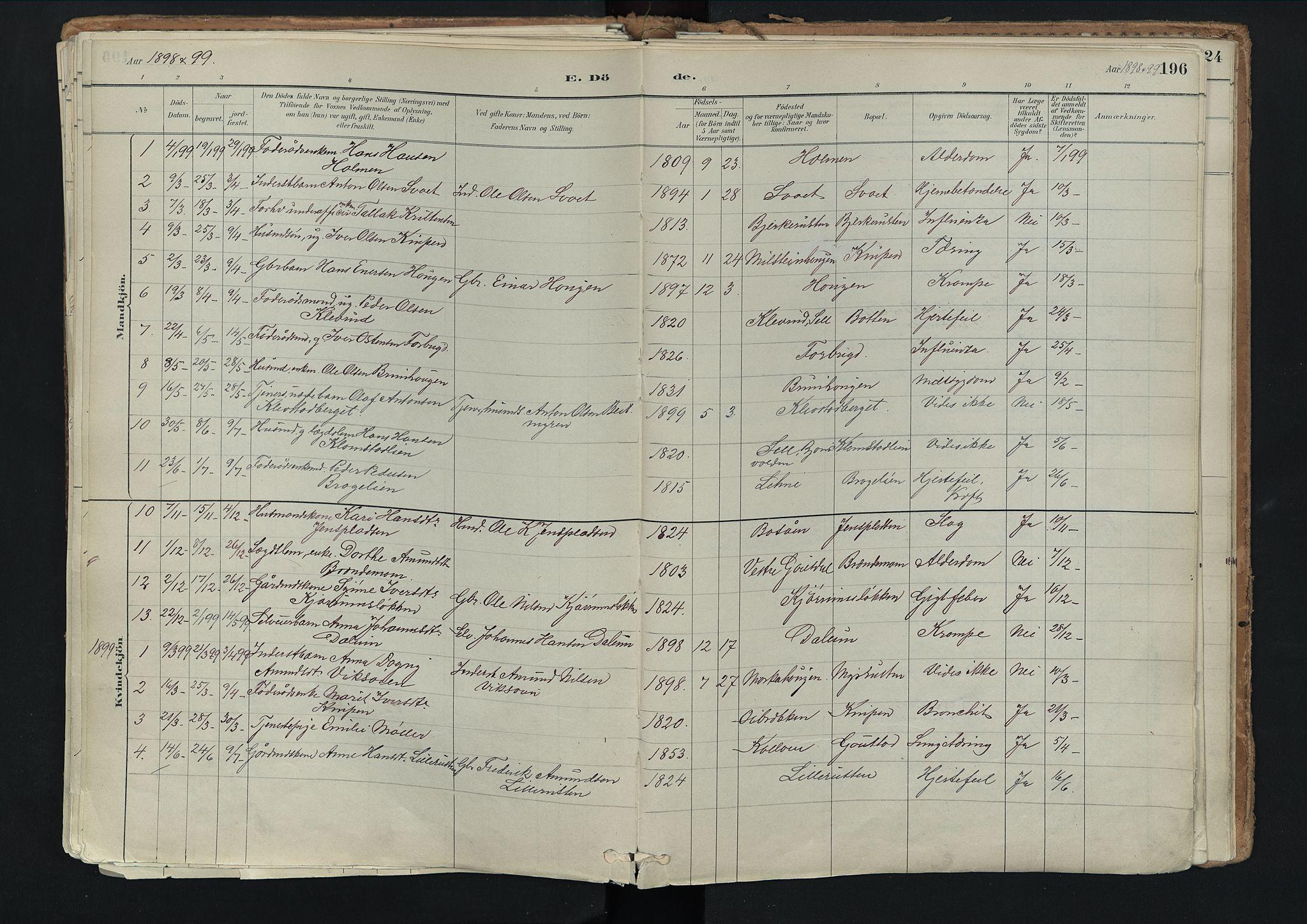 SAH, Nord-Fron prestekontor, Ministerialbok nr. 3, 1884-1914, s. 196