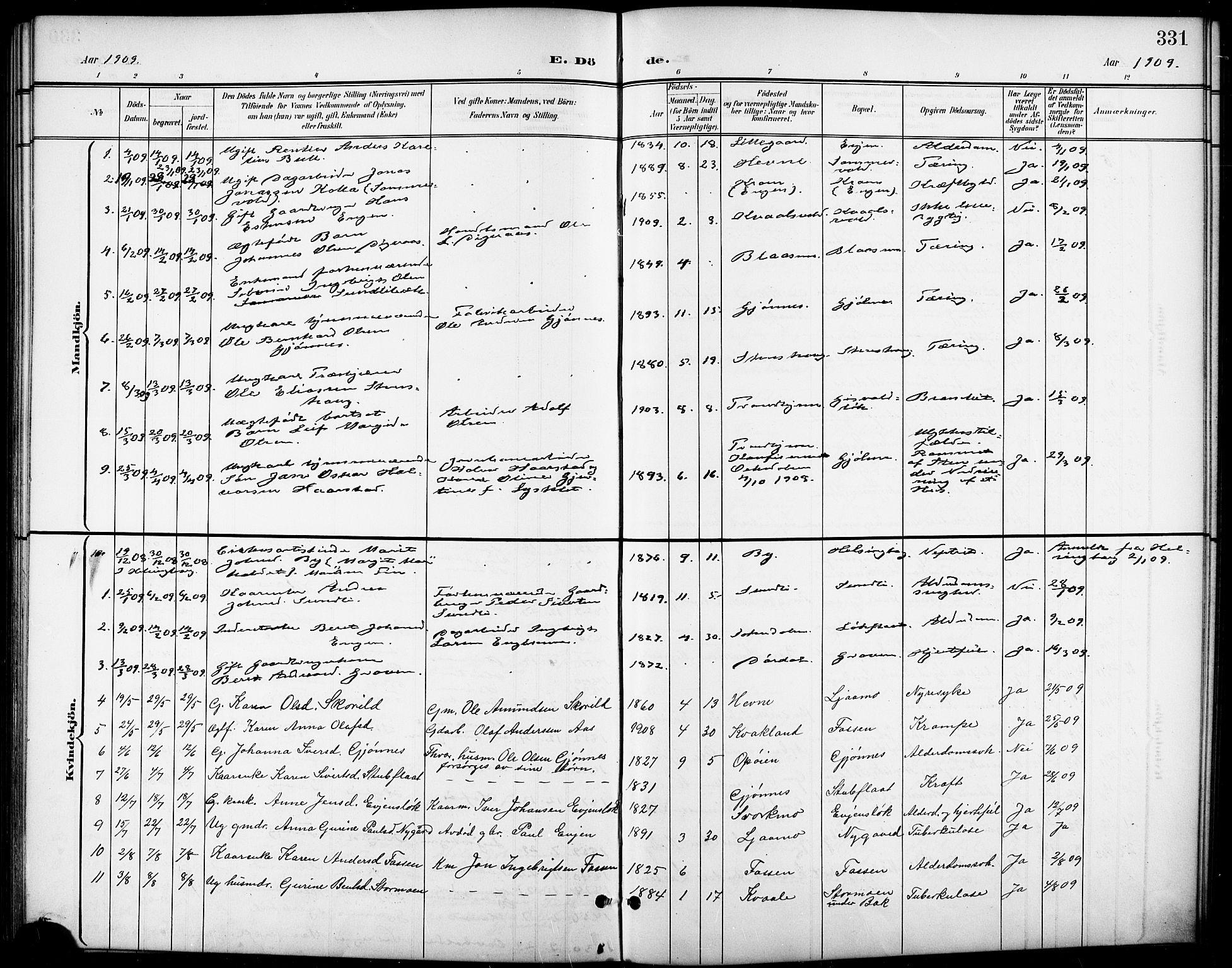 SAT, Ministerialprotokoller, klokkerbøker og fødselsregistre - Sør-Trøndelag, 668/L0819: Klokkerbok nr. 668C08, 1899-1912, s. 331