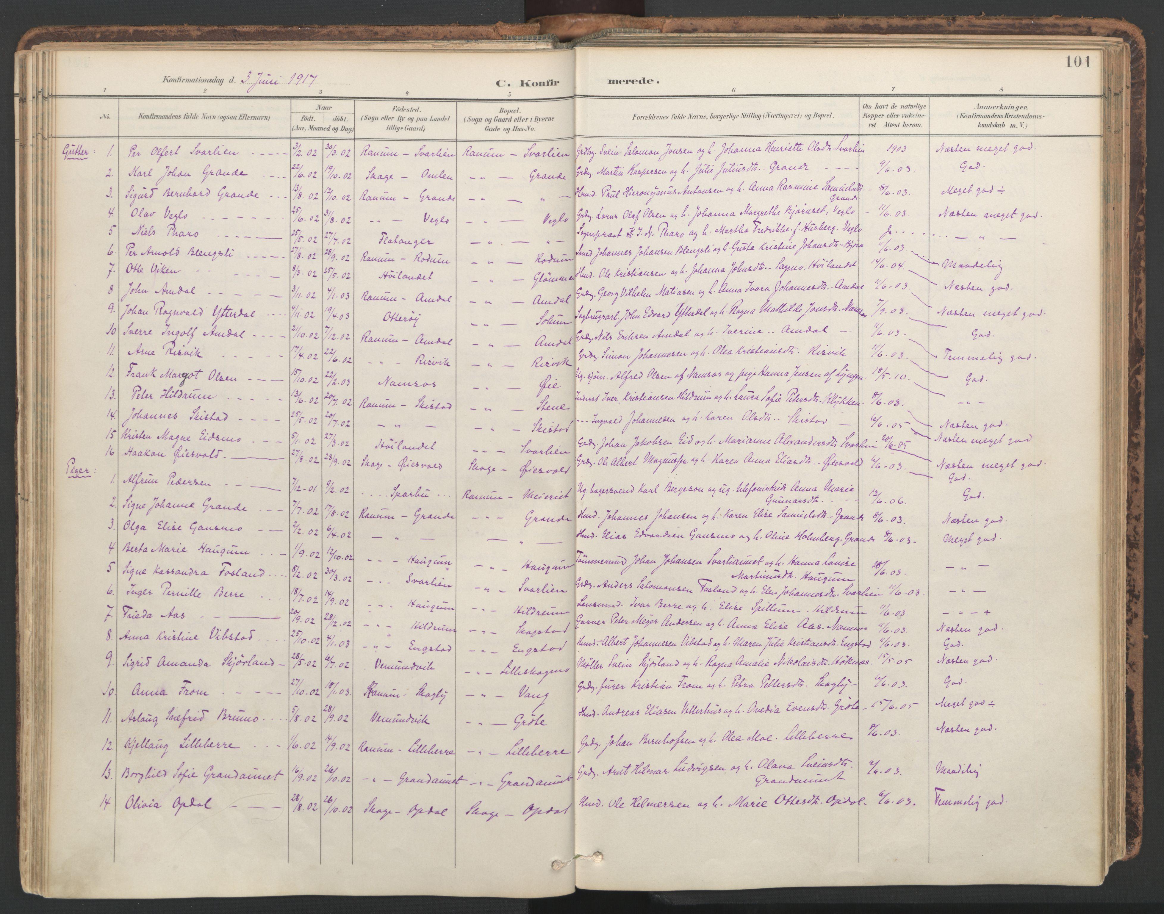 SAT, Ministerialprotokoller, klokkerbøker og fødselsregistre - Nord-Trøndelag, 764/L0556: Ministerialbok nr. 764A11, 1897-1924, s. 101