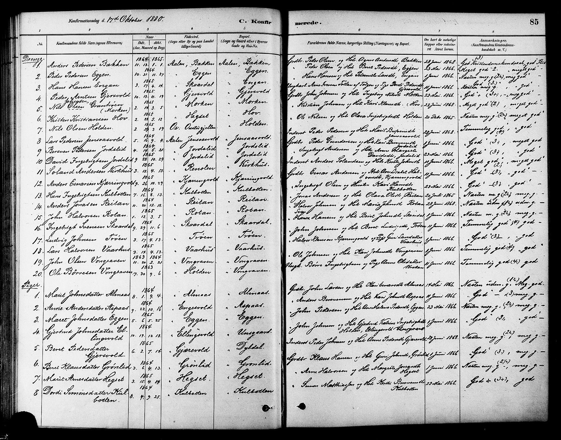 SAT, Ministerialprotokoller, klokkerbøker og fødselsregistre - Sør-Trøndelag, 686/L0983: Ministerialbok nr. 686A01, 1879-1890, s. 85