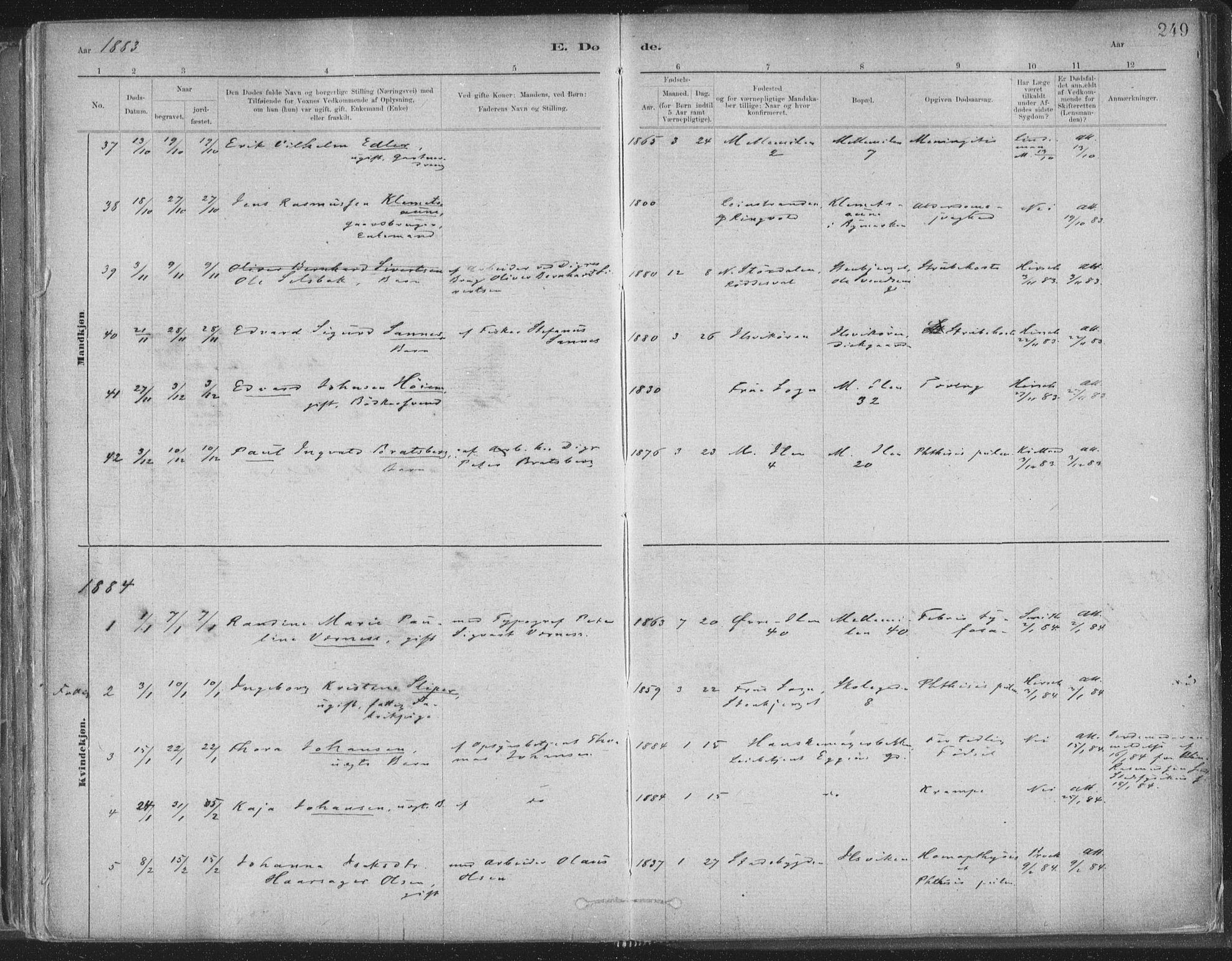 SAT, Ministerialprotokoller, klokkerbøker og fødselsregistre - Sør-Trøndelag, 603/L0162: Ministerialbok nr. 603A01, 1879-1895, s. 249