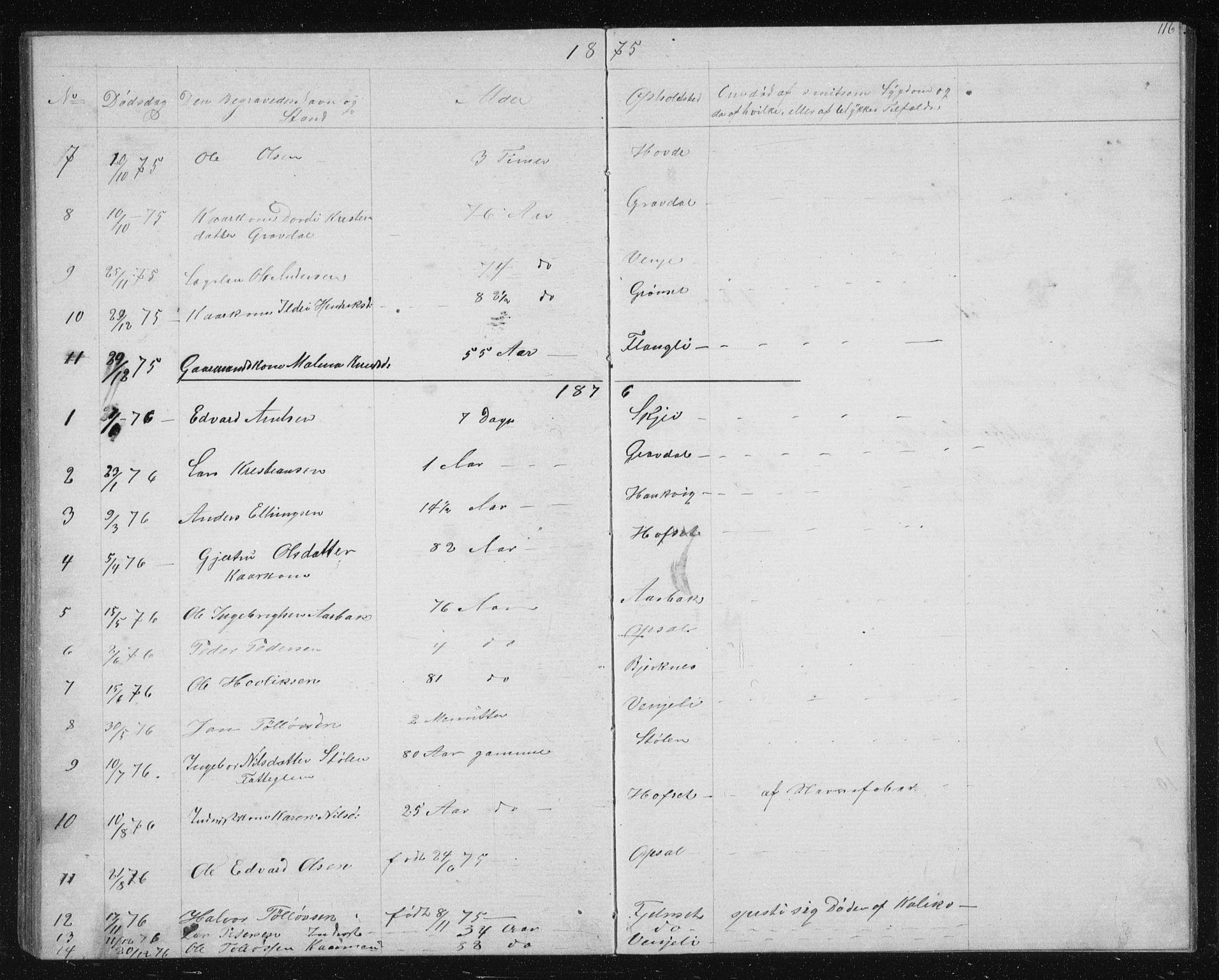 SAT, Ministerialprotokoller, klokkerbøker og fødselsregistre - Sør-Trøndelag, 631/L0513: Klokkerbok nr. 631C01, 1869-1879, s. 116