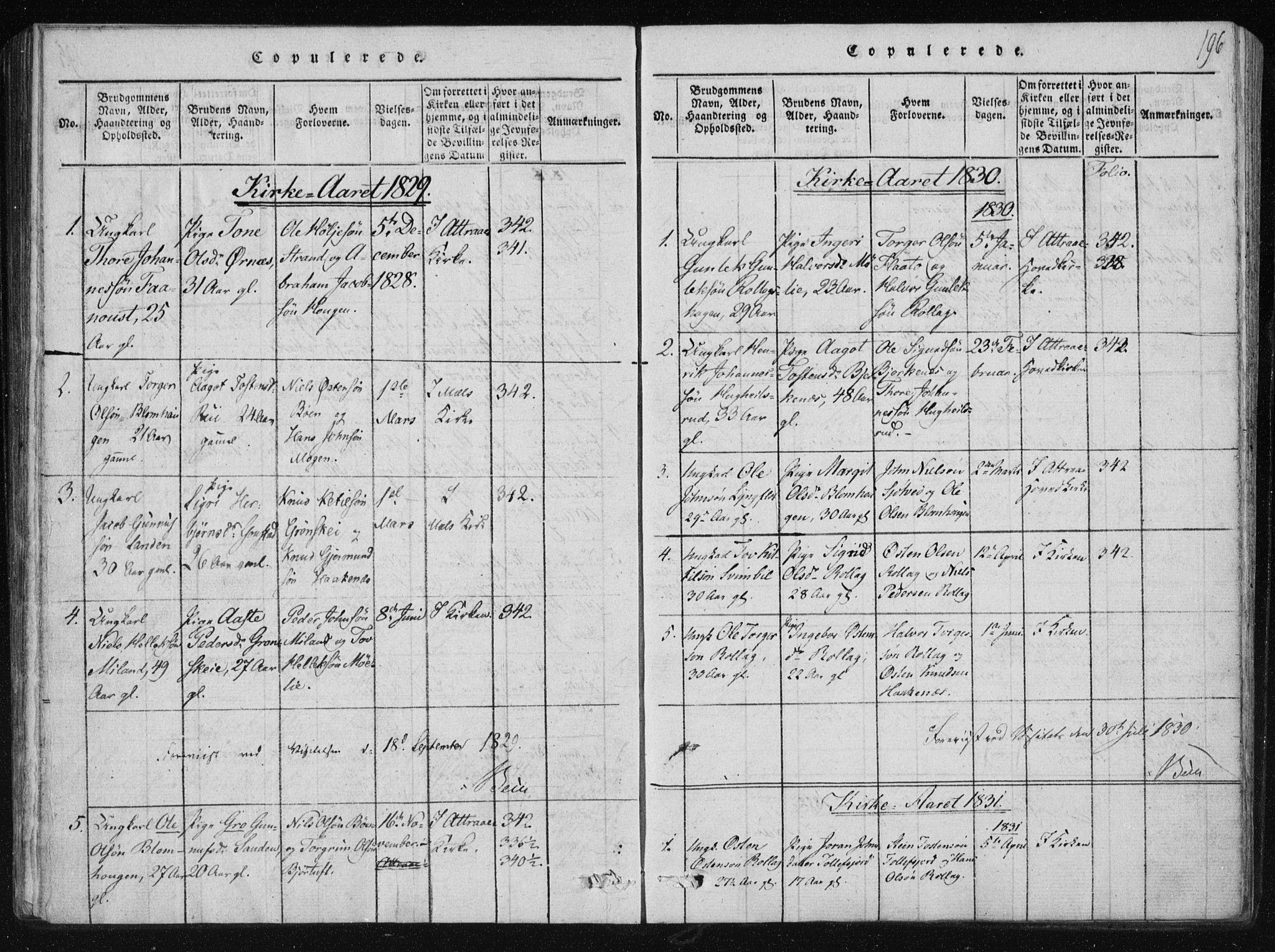 SAKO, Tinn kirkebøker, F/Fb/L0001: Ministerialbok nr. II 1, 1815-1843, s. 196