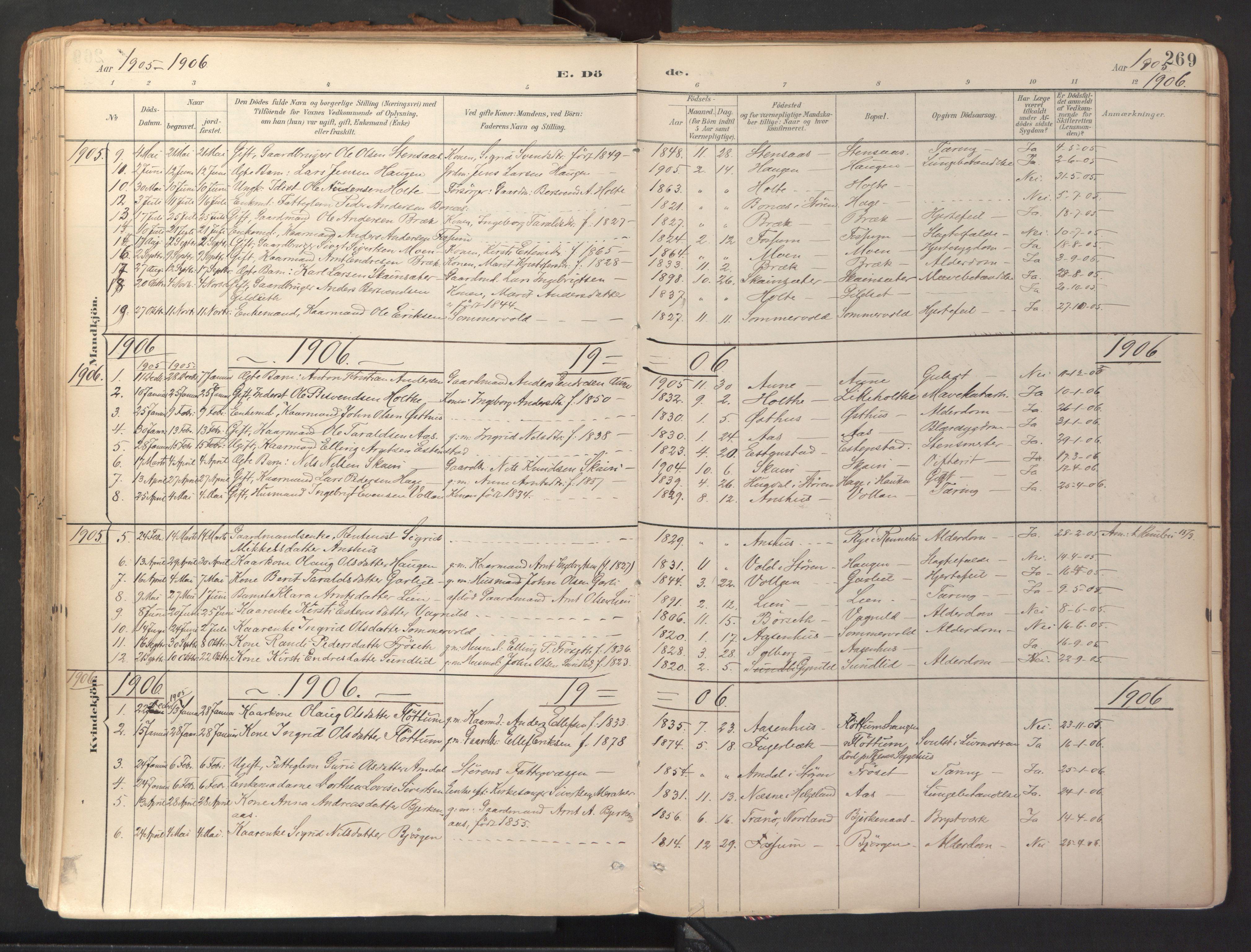 SAT, Ministerialprotokoller, klokkerbøker og fødselsregistre - Sør-Trøndelag, 689/L1041: Ministerialbok nr. 689A06, 1891-1923, s. 269