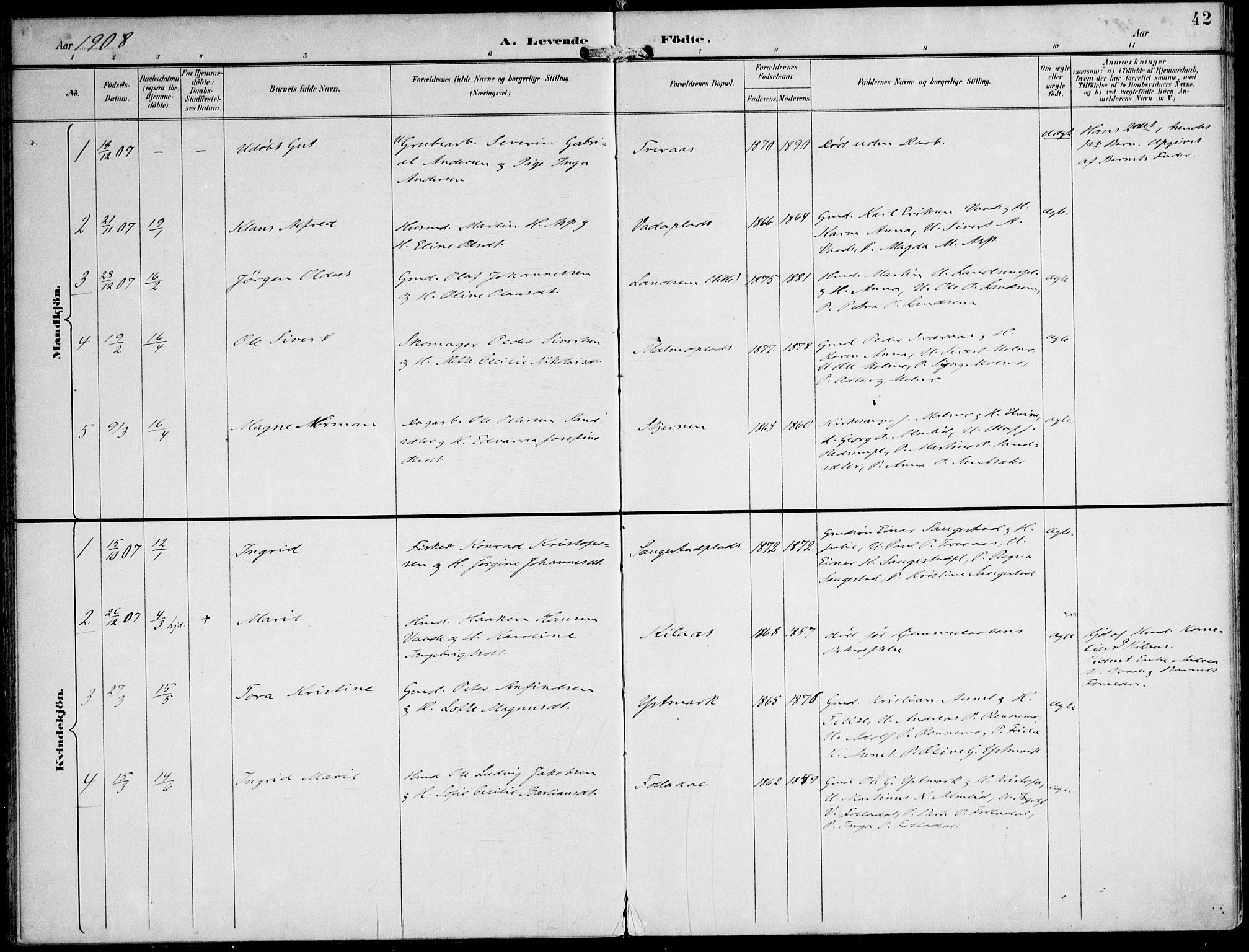 SAT, Ministerialprotokoller, klokkerbøker og fødselsregistre - Nord-Trøndelag, 745/L0430: Ministerialbok nr. 745A02, 1895-1913, s. 42