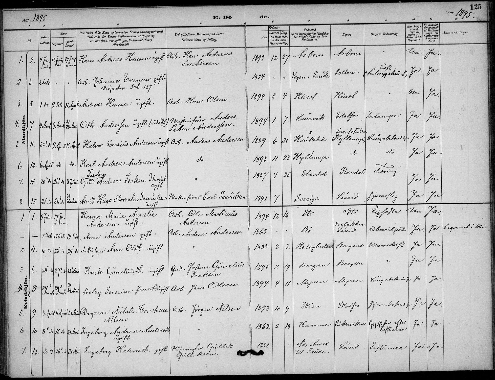 SAKO, Solum kirkebøker, F/Fb/L0002: Ministerialbok nr. II 2, 1893-1901, s. 125