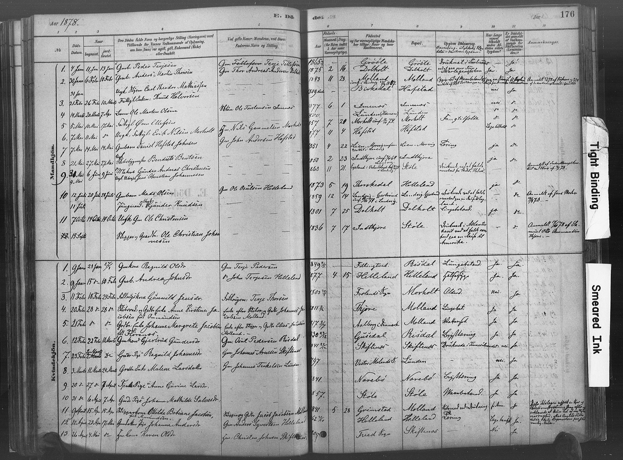 SAK, Hommedal sokneprestkontor, F/Fa/Fab/L0006: Ministerialbok nr. A 6, 1878-1897, s. 176