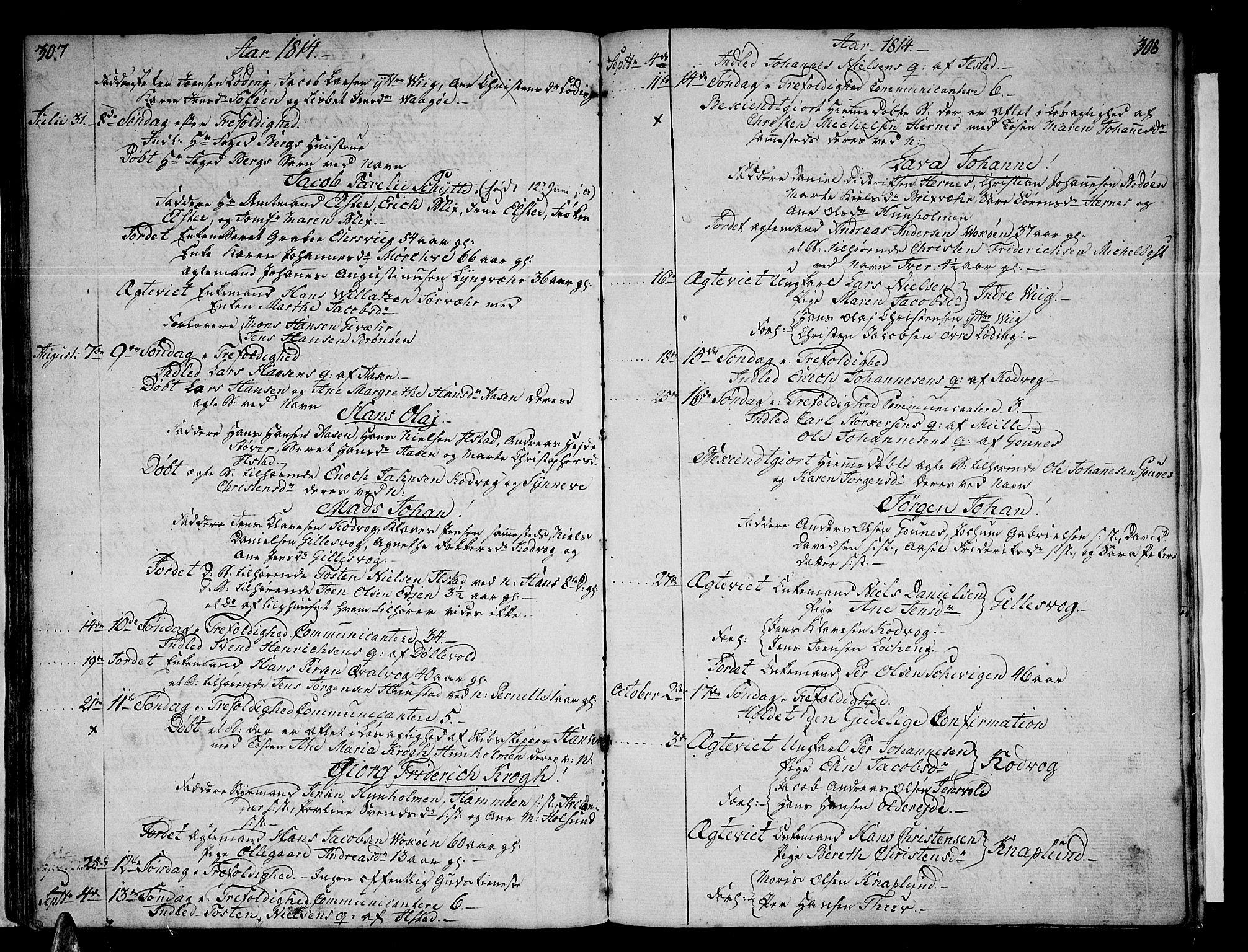 SAT, Ministerialprotokoller, klokkerbøker og fødselsregistre - Nordland, 801/L0004: Ministerialbok nr. 801A04, 1796-1817, s. 307-308
