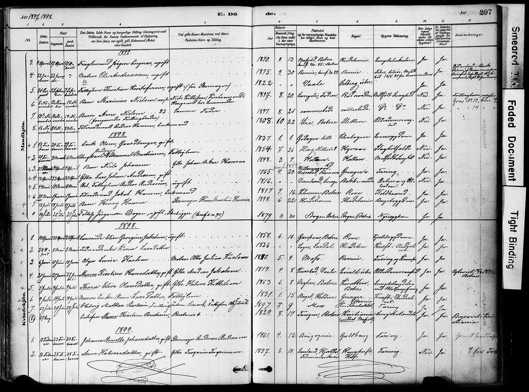 SAKO, Botne kirkebøker, F/Fa/L0007: Ministerialbok nr. I 7, 1878-1910, s. 297