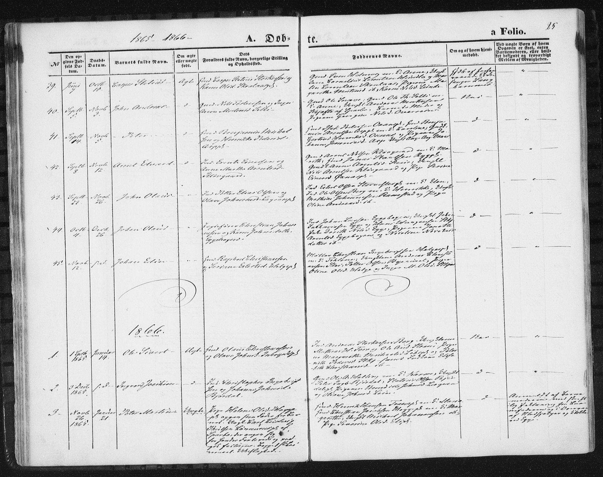 SAT, Ministerialprotokoller, klokkerbøker og fødselsregistre - Nord-Trøndelag, 746/L0447: Ministerialbok nr. 746A06, 1860-1877, s. 25