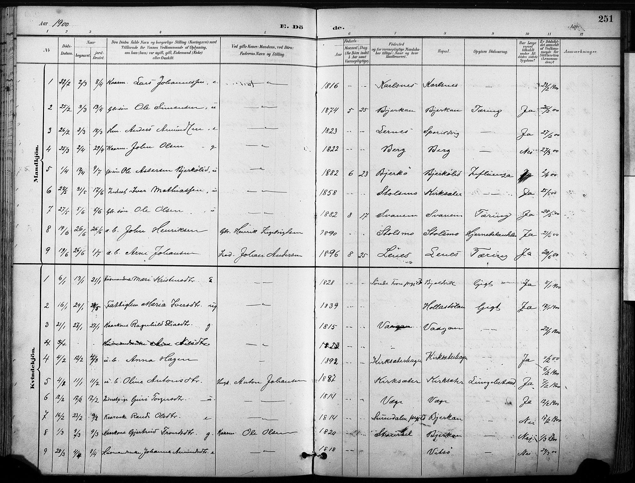 SAT, Ministerialprotokoller, klokkerbøker og fødselsregistre - Sør-Trøndelag, 630/L0497: Ministerialbok nr. 630A10, 1896-1910, s. 251