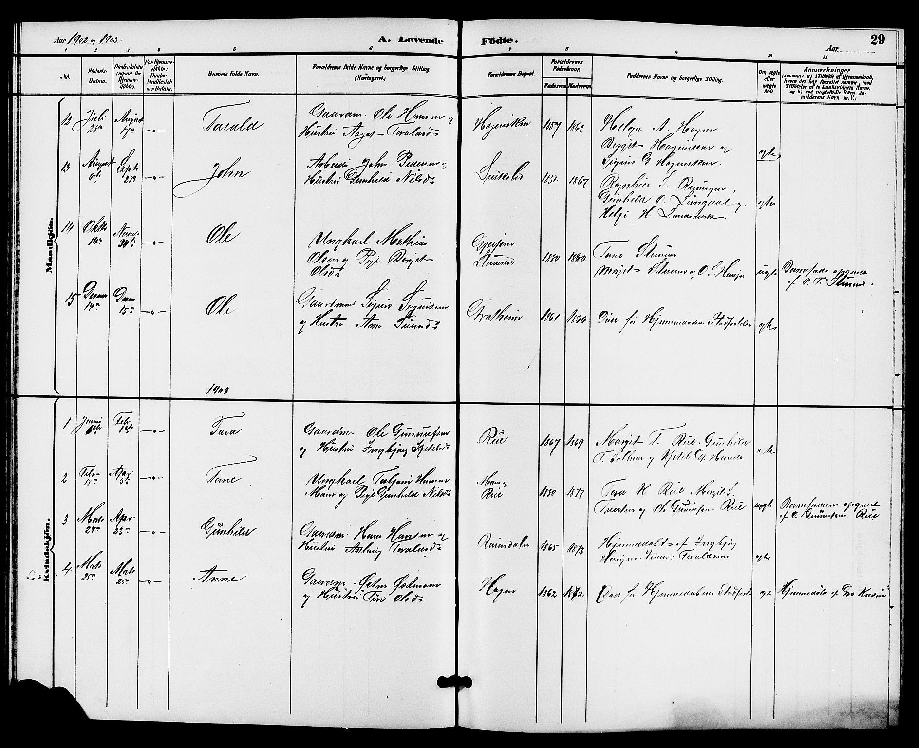 SAKO, Hjartdal kirkebøker, G/Gc/L0003: Klokkerbok nr. III 3, 1890-1907, s. 29