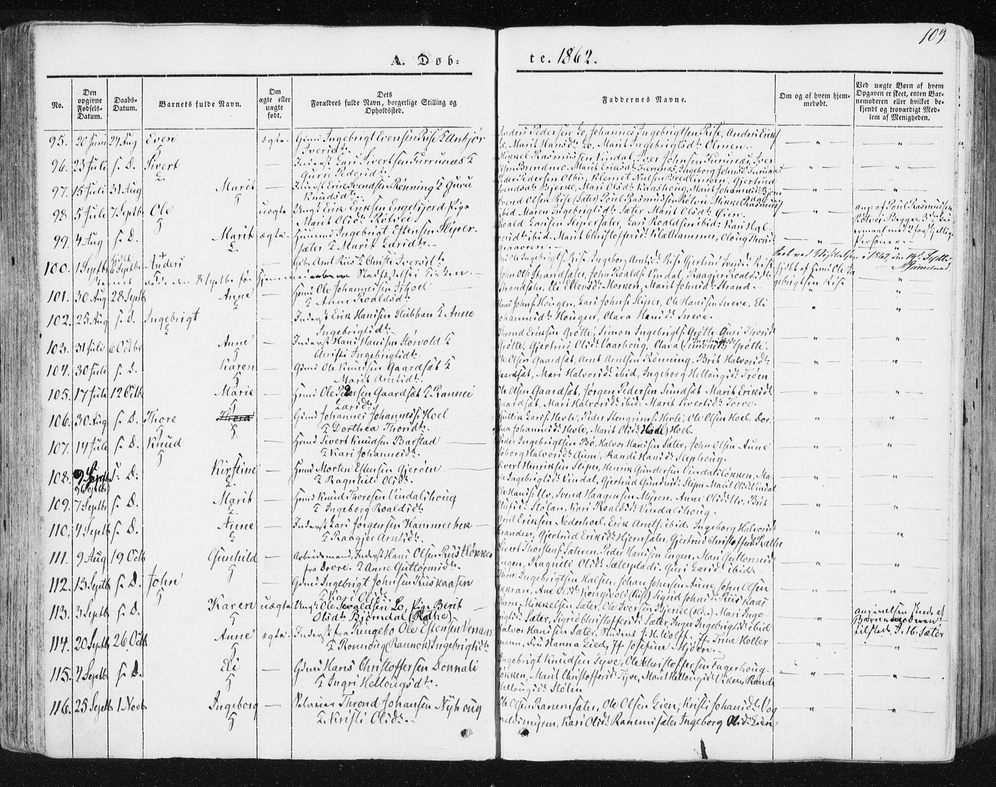 SAT, Ministerialprotokoller, klokkerbøker og fødselsregistre - Sør-Trøndelag, 678/L0899: Ministerialbok nr. 678A08, 1848-1872, s. 109