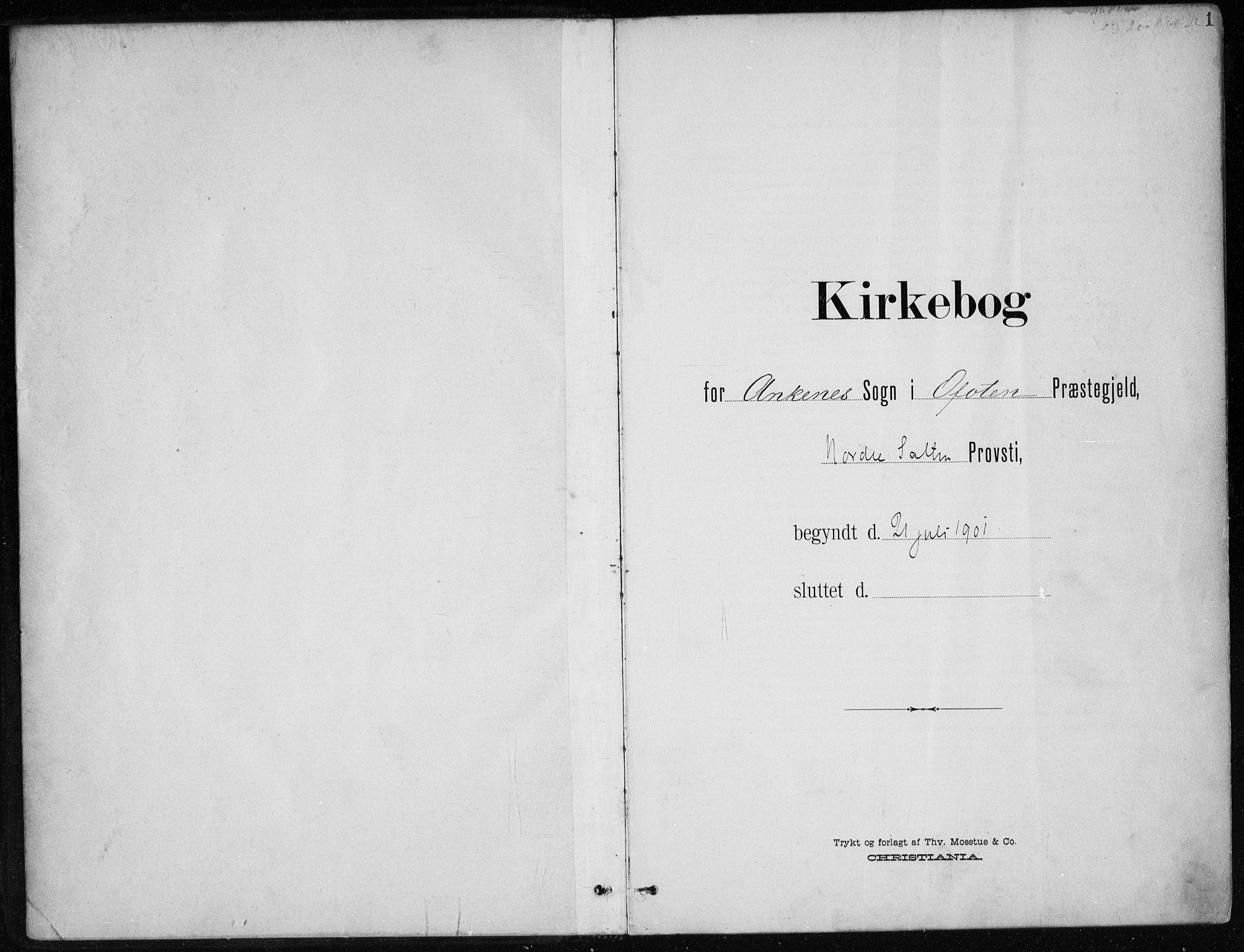 SAT, Ministerialprotokoller, klokkerbøker og fødselsregistre - Nordland, 866/L0941: Ministerialbok nr. 866A04, 1901-1917, s. 1