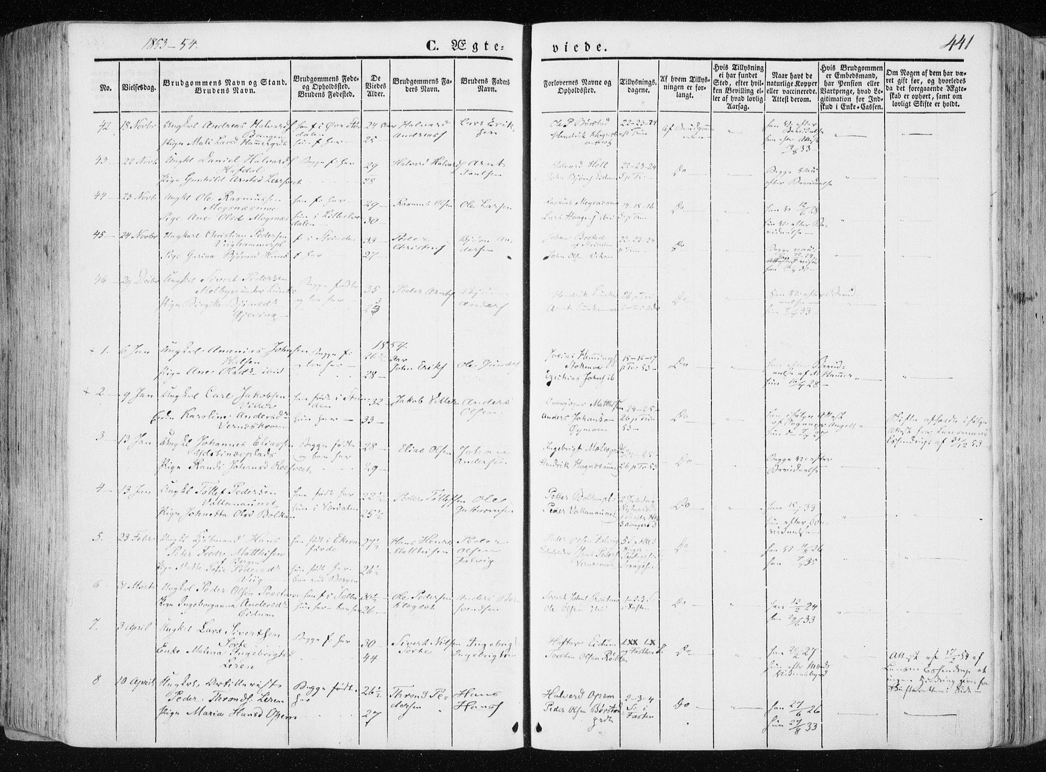 SAT, Ministerialprotokoller, klokkerbøker og fødselsregistre - Nord-Trøndelag, 709/L0074: Ministerialbok nr. 709A14, 1845-1858, s. 441