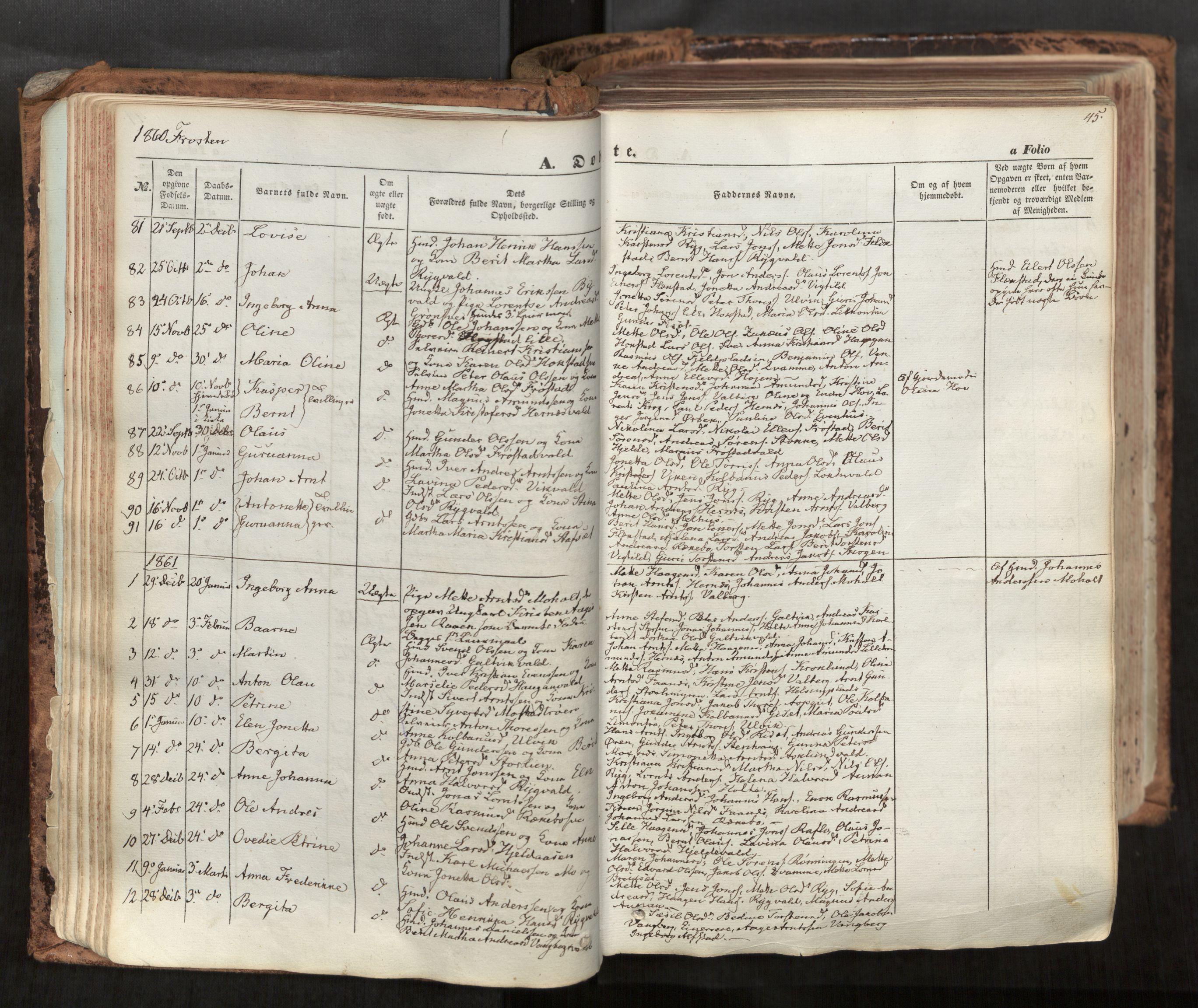 SAT, Ministerialprotokoller, klokkerbøker og fødselsregistre - Nord-Trøndelag, 713/L0116: Ministerialbok nr. 713A07, 1850-1877, s. 45