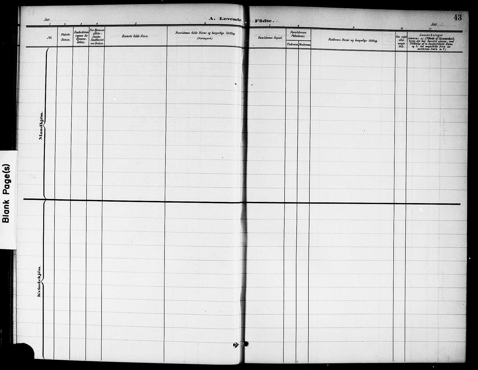 SAO, Nannestad prestekontor Kirkebøker, G/Ga/L0002: Klokkerbok nr. I 2, 1901-1913, s. 43