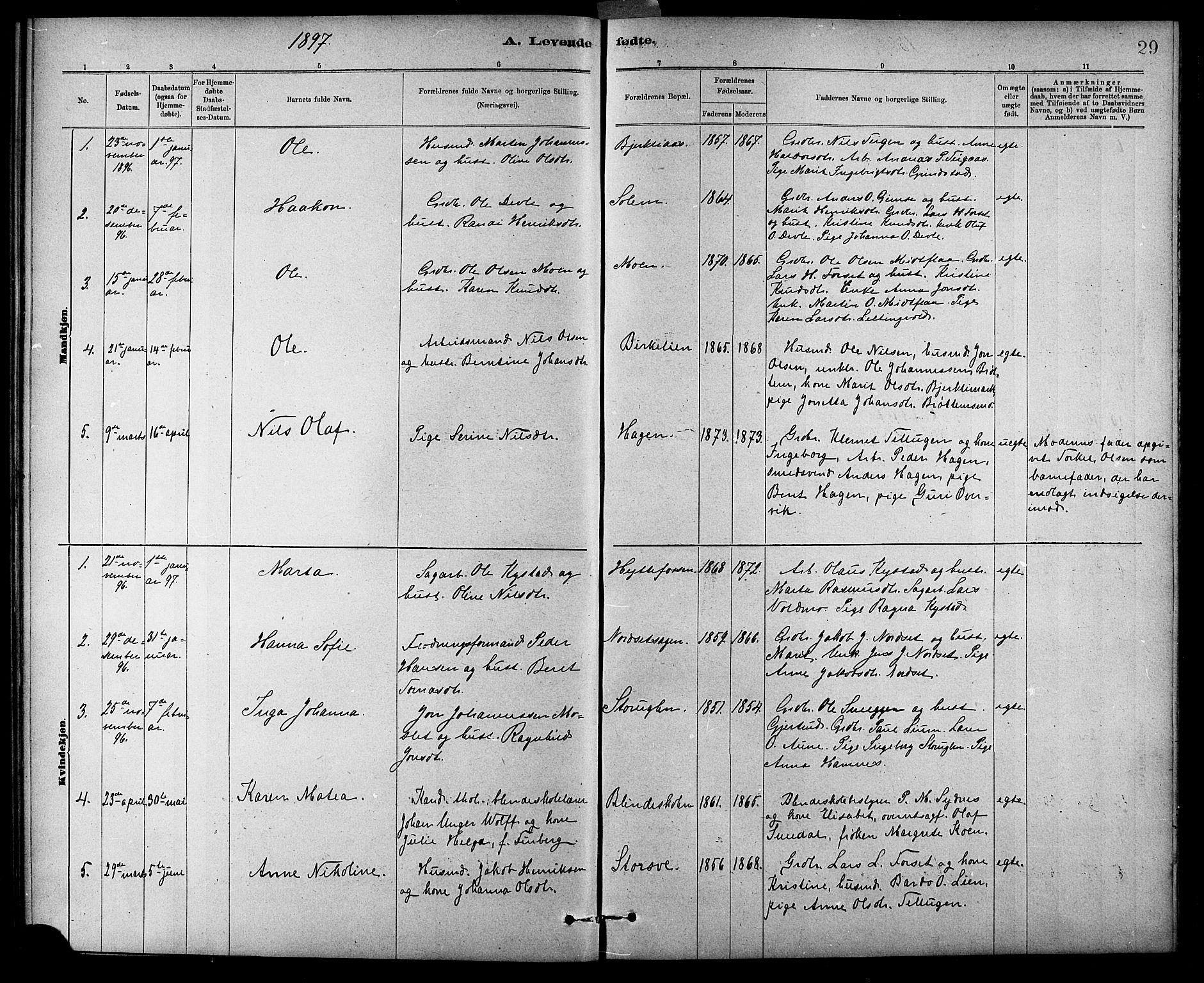 SAT, Ministerialprotokoller, klokkerbøker og fødselsregistre - Sør-Trøndelag, 618/L0452: Klokkerbok nr. 618C03, 1884-1906, s. 29