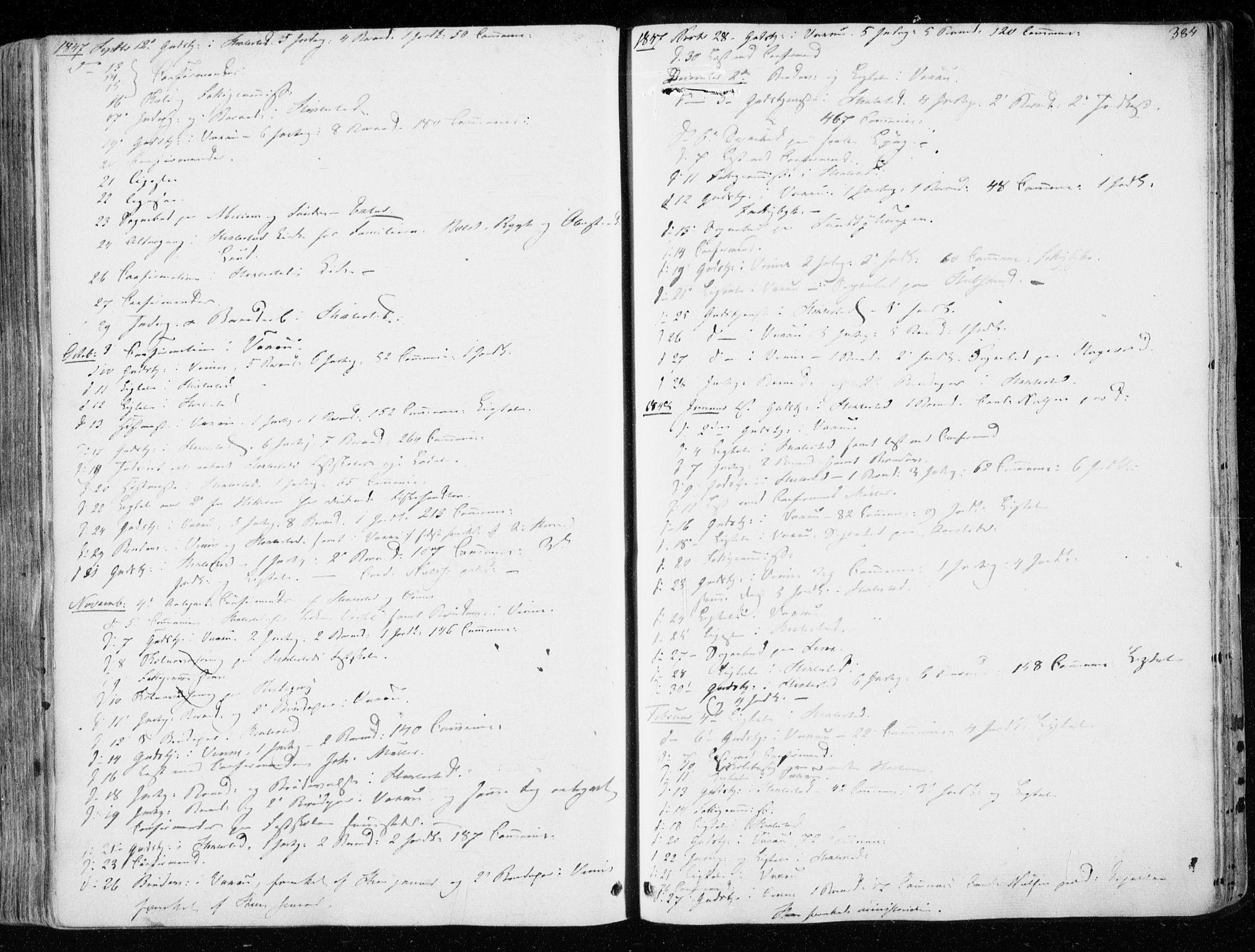 SAT, Ministerialprotokoller, klokkerbøker og fødselsregistre - Nord-Trøndelag, 723/L0239: Ministerialbok nr. 723A08, 1841-1851, s. 384