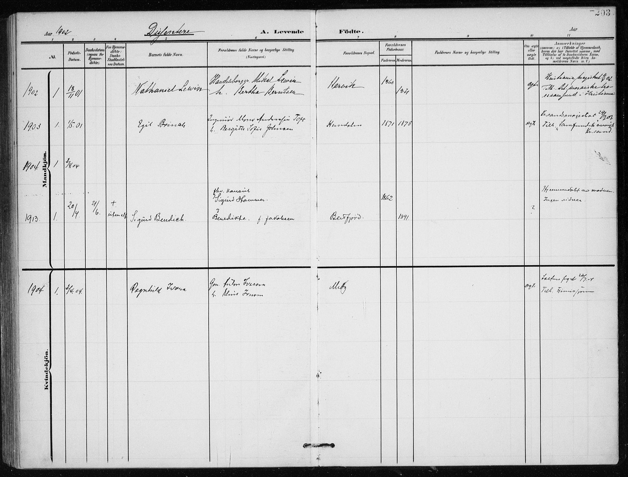 SAT, Ministerialprotokoller, klokkerbøker og fødselsregistre - Nordland, 866/L0941: Ministerialbok nr. 866A04, 1901-1917, s. 203