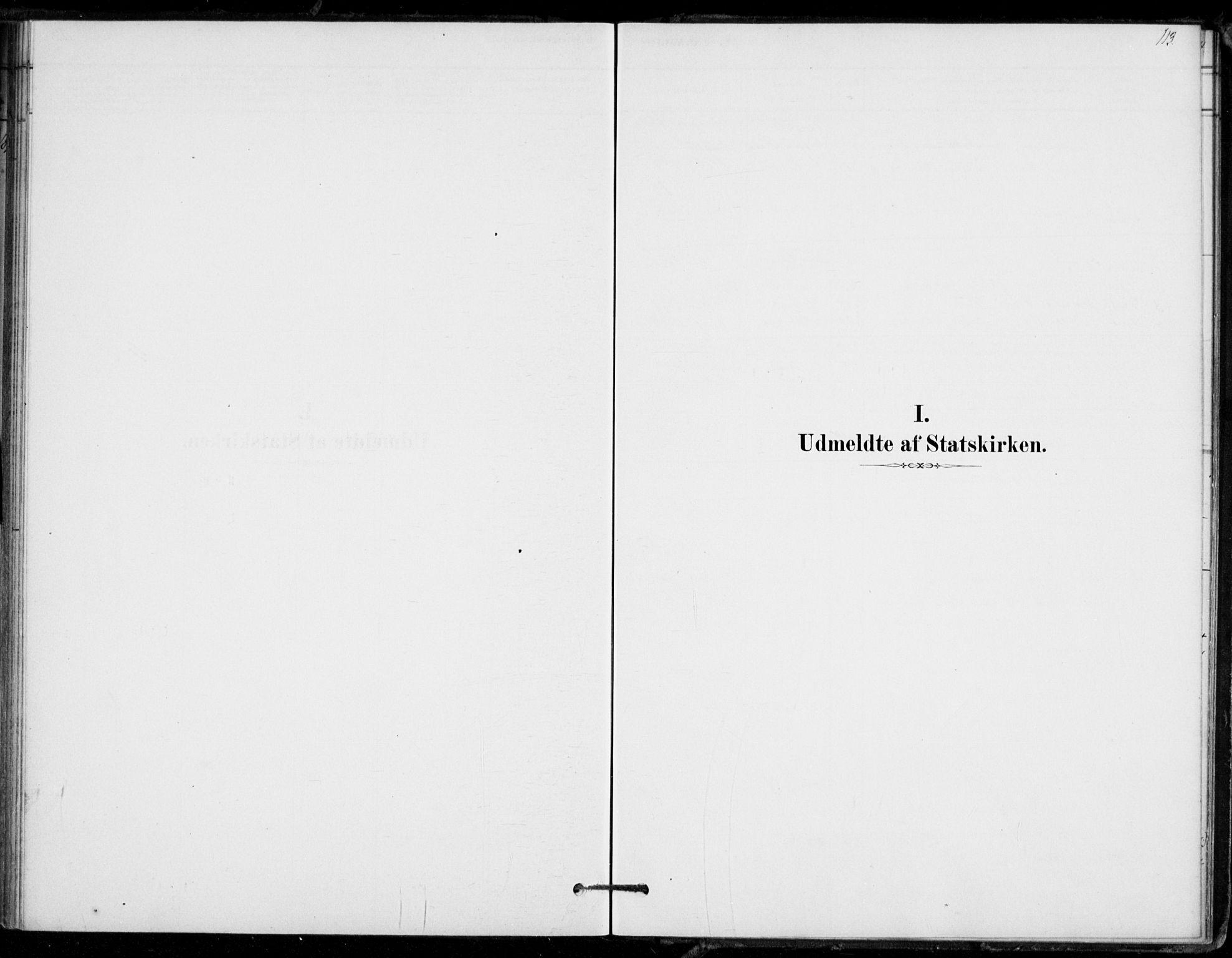 SAKO, Hof kirkebøker, F/Fb/L0001: Ministerialbok nr. II 1, 1878-1907, s. 113