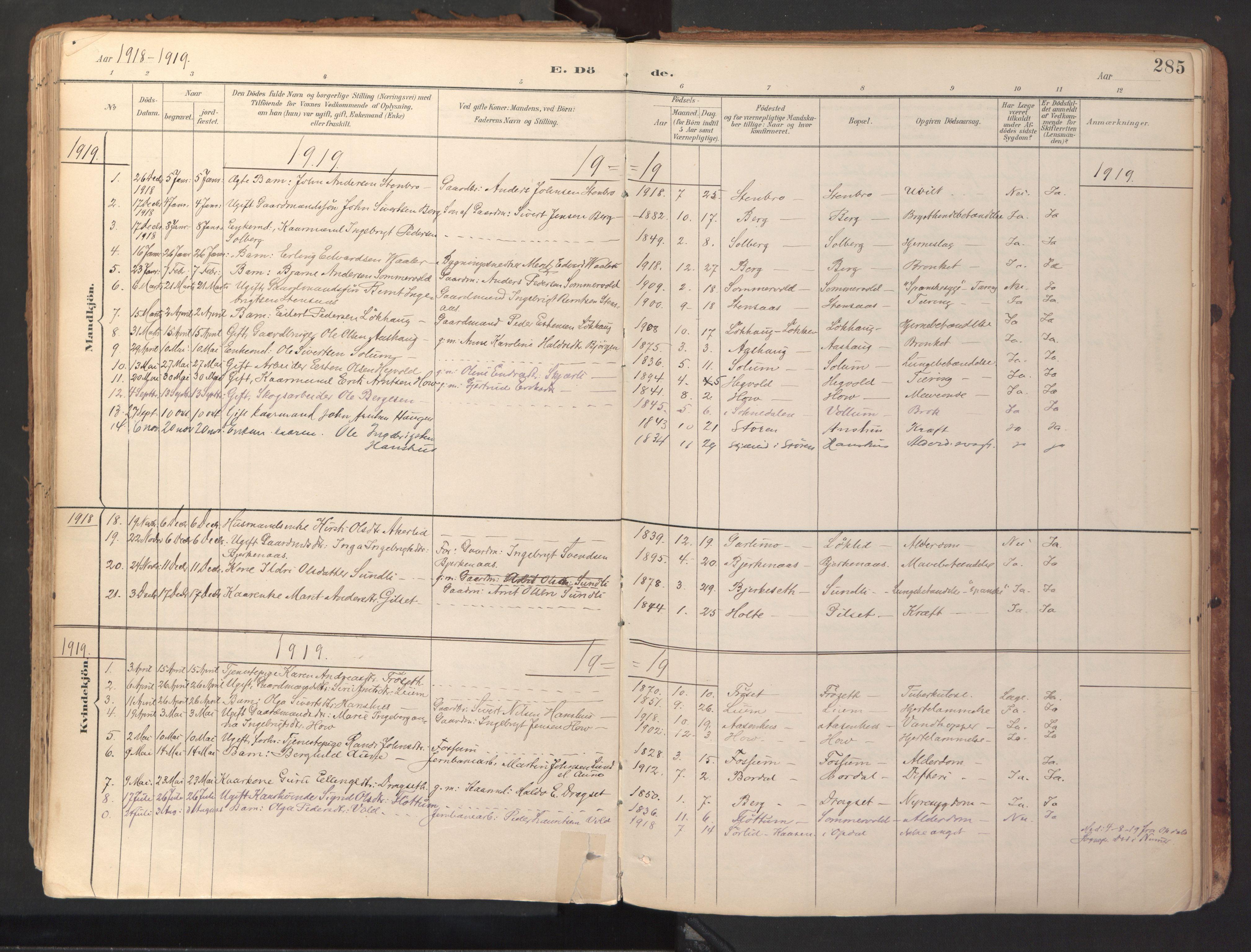 SAT, Ministerialprotokoller, klokkerbøker og fødselsregistre - Sør-Trøndelag, 689/L1041: Ministerialbok nr. 689A06, 1891-1923, s. 285
