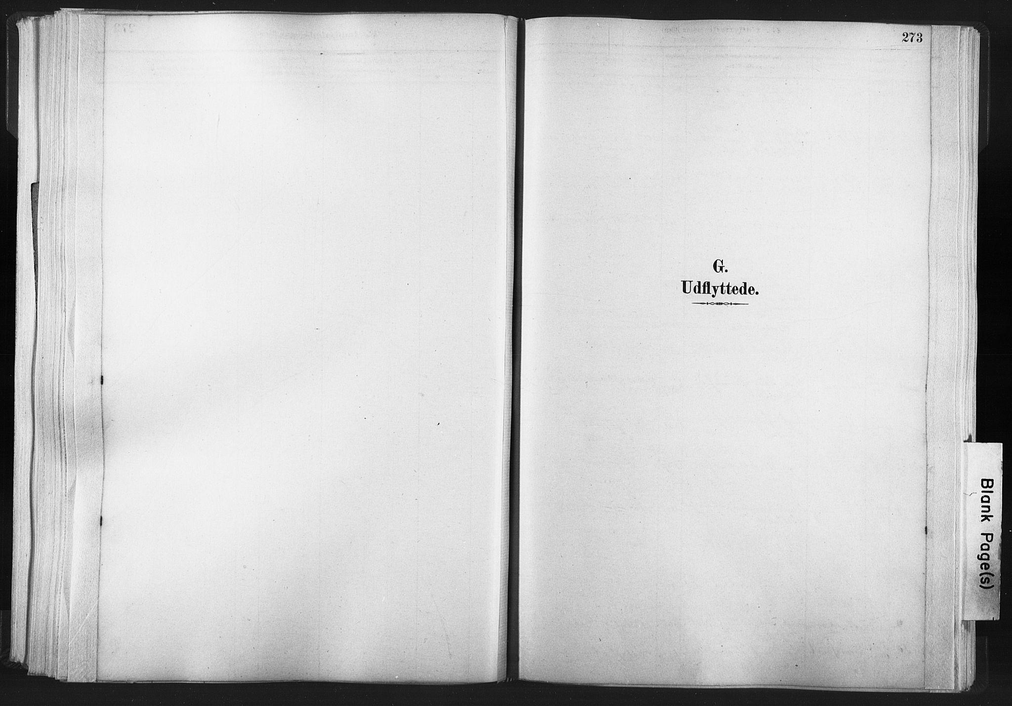 SAT, Ministerialprotokoller, klokkerbøker og fødselsregistre - Nord-Trøndelag, 749/L0474: Ministerialbok nr. 749A08, 1887-1903, s. 273