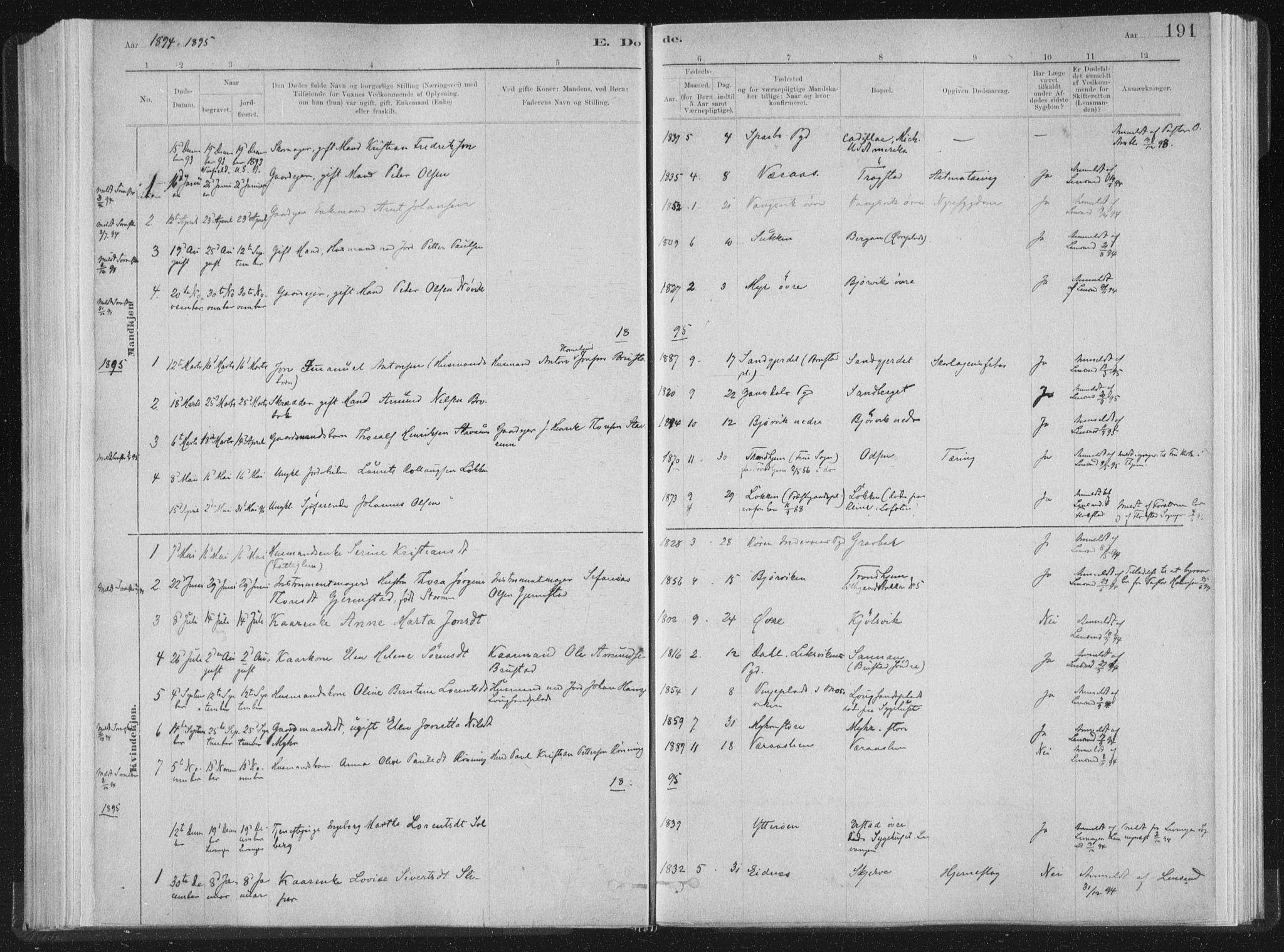 SAT, Ministerialprotokoller, klokkerbøker og fødselsregistre - Nord-Trøndelag, 722/L0220: Ministerialbok nr. 722A07, 1881-1908, s. 191