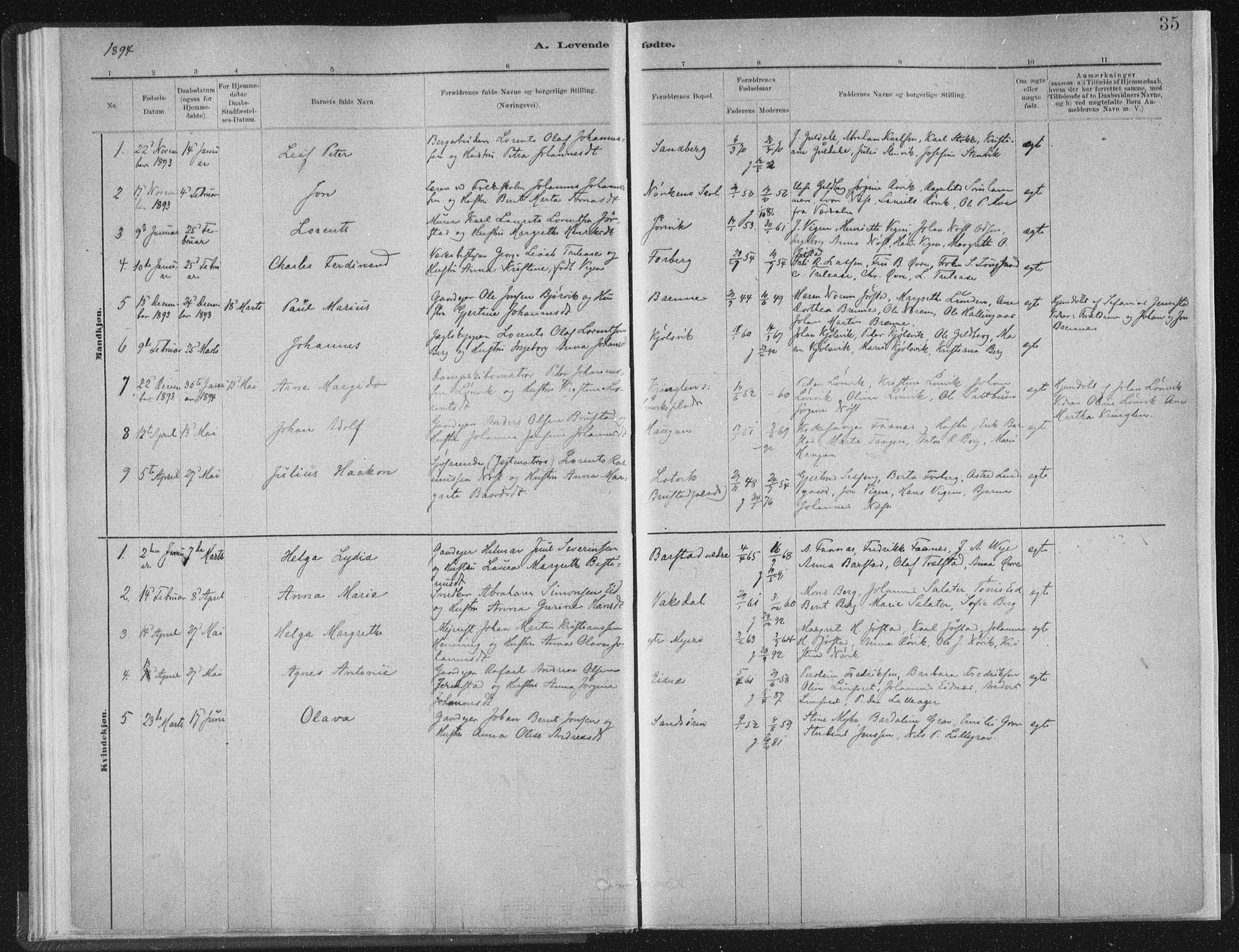 SAT, Ministerialprotokoller, klokkerbøker og fødselsregistre - Nord-Trøndelag, 722/L0220: Ministerialbok nr. 722A07, 1881-1908, s. 35