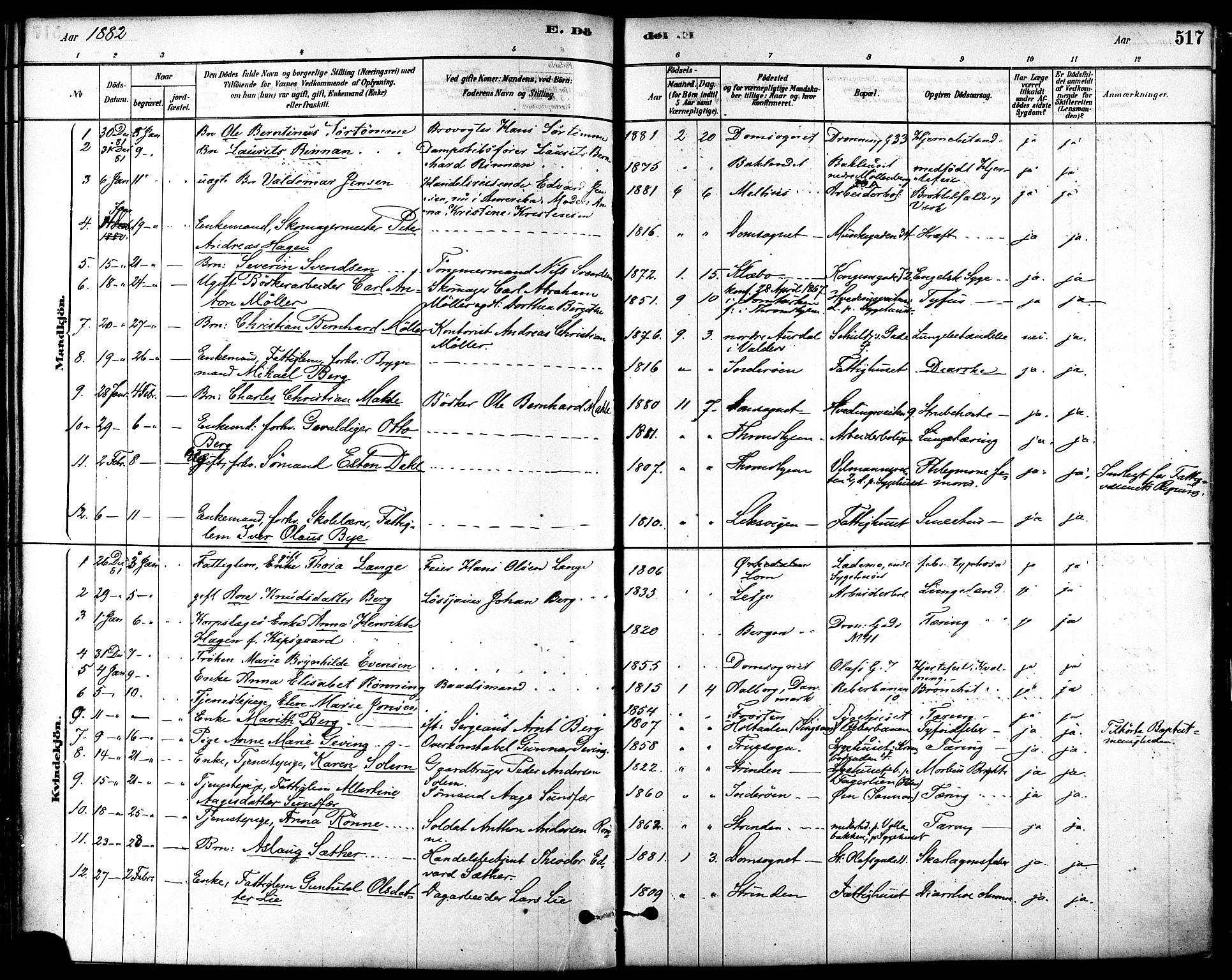 SAT, Ministerialprotokoller, klokkerbøker og fødselsregistre - Sør-Trøndelag, 601/L0058: Ministerialbok nr. 601A26, 1877-1891, s. 517