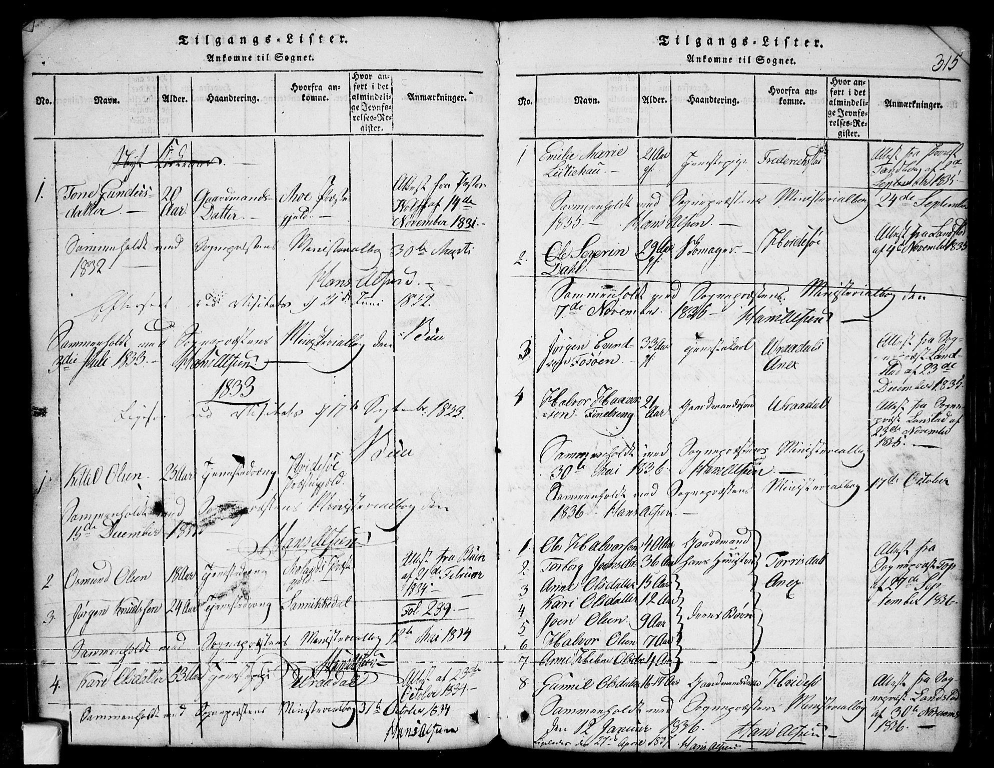 SAKO, Nissedal kirkebøker, G/Ga/L0001: Klokkerbok nr. I 1, 1814-1860, s. 315