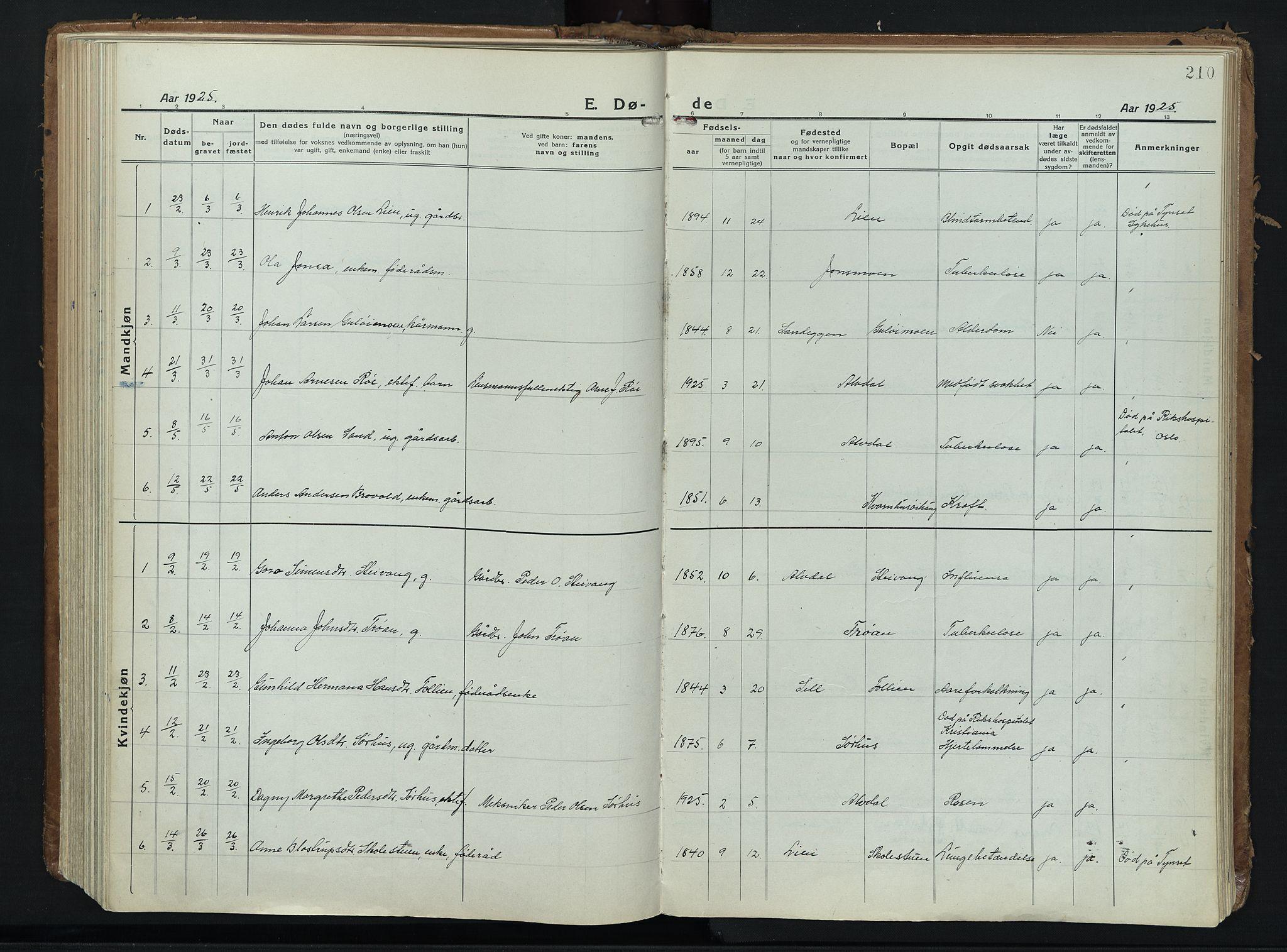 SAH, Alvdal prestekontor, Ministerialbok nr. 6, 1920-1937, s. 210