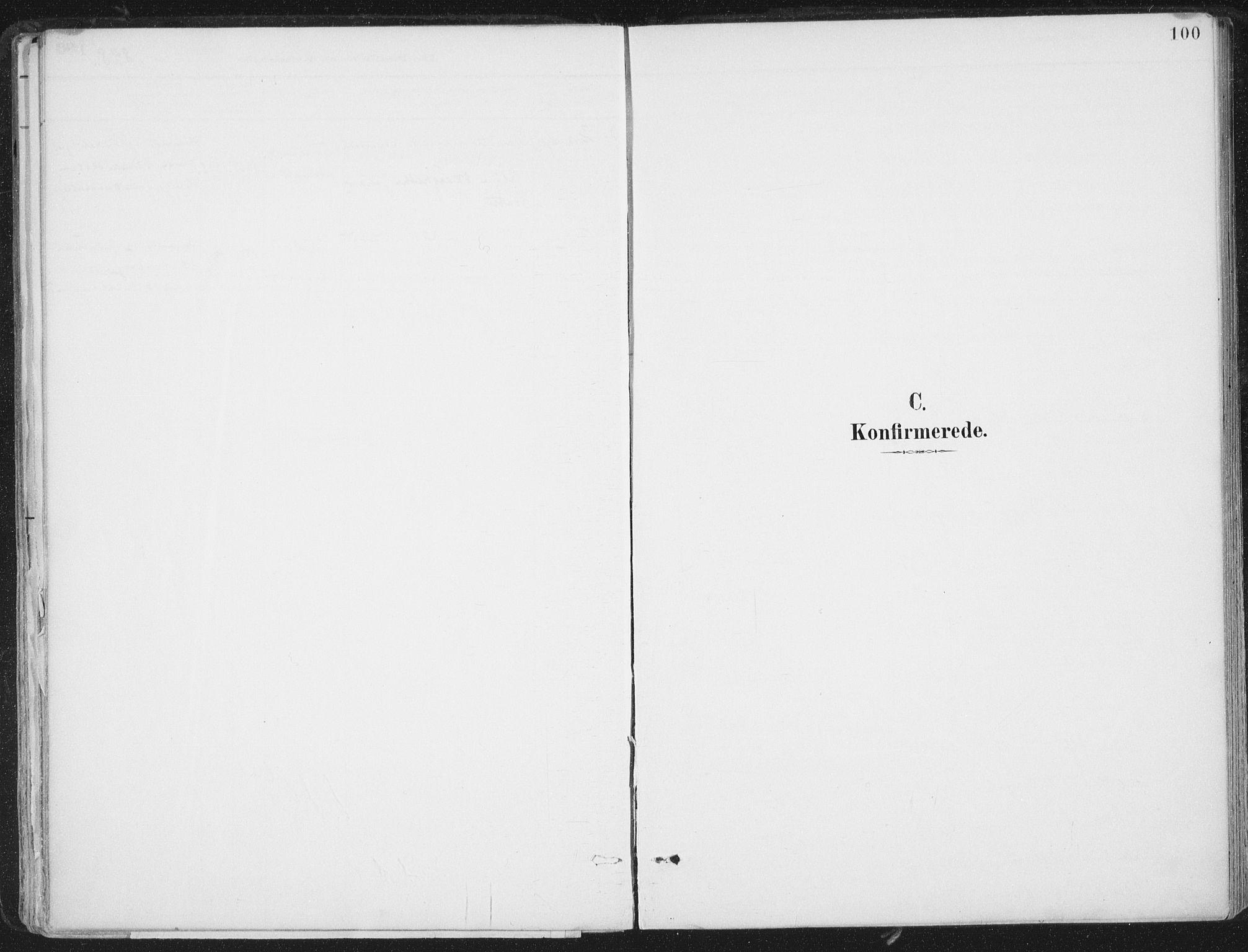 SAT, Ministerialprotokoller, klokkerbøker og fødselsregistre - Nord-Trøndelag, 786/L0687: Ministerialbok nr. 786A03, 1888-1898, s. 100