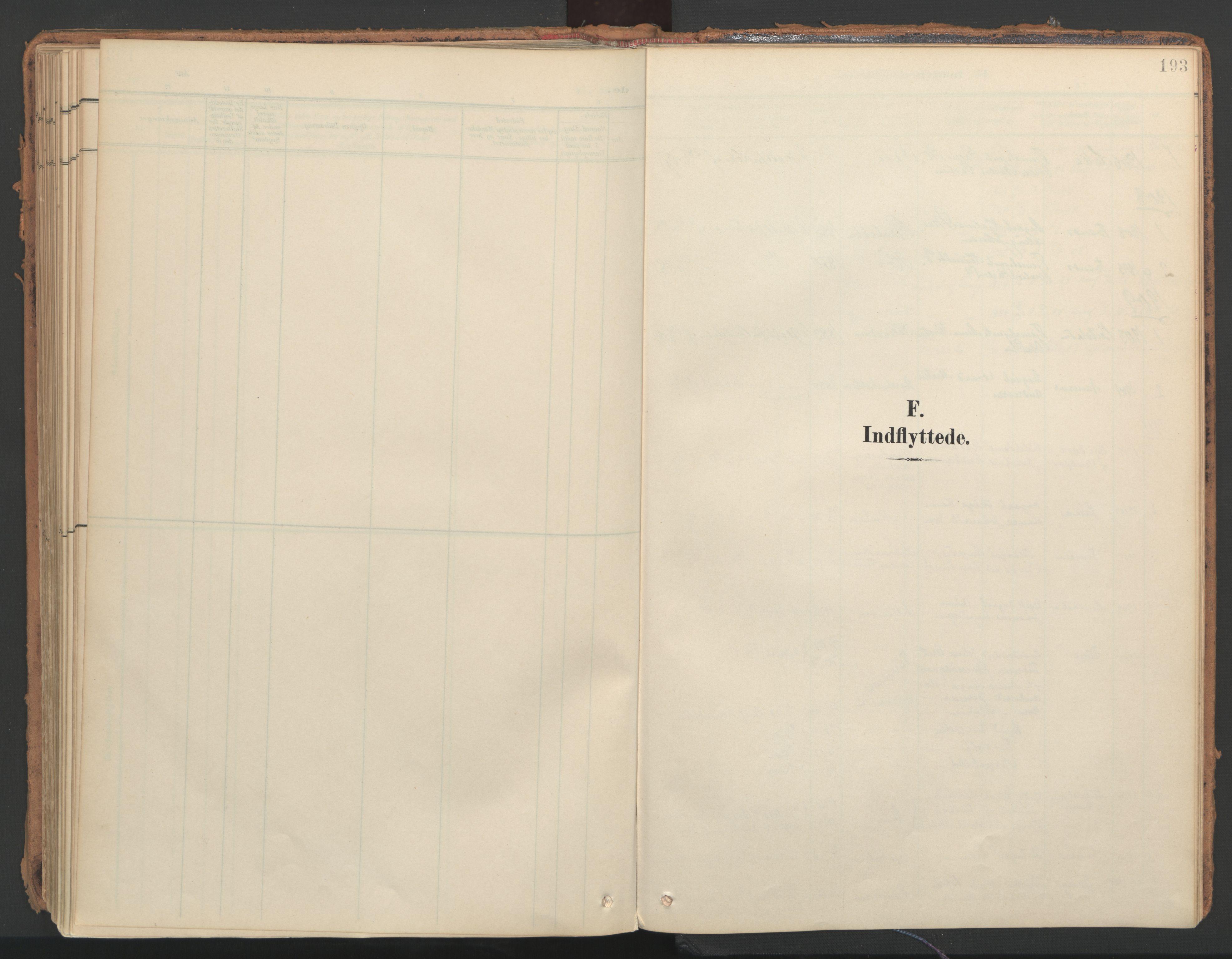 SAT, Ministerialprotokoller, klokkerbøker og fødselsregistre - Nord-Trøndelag, 766/L0564: Ministerialbok nr. 767A02, 1900-1932, s. 193